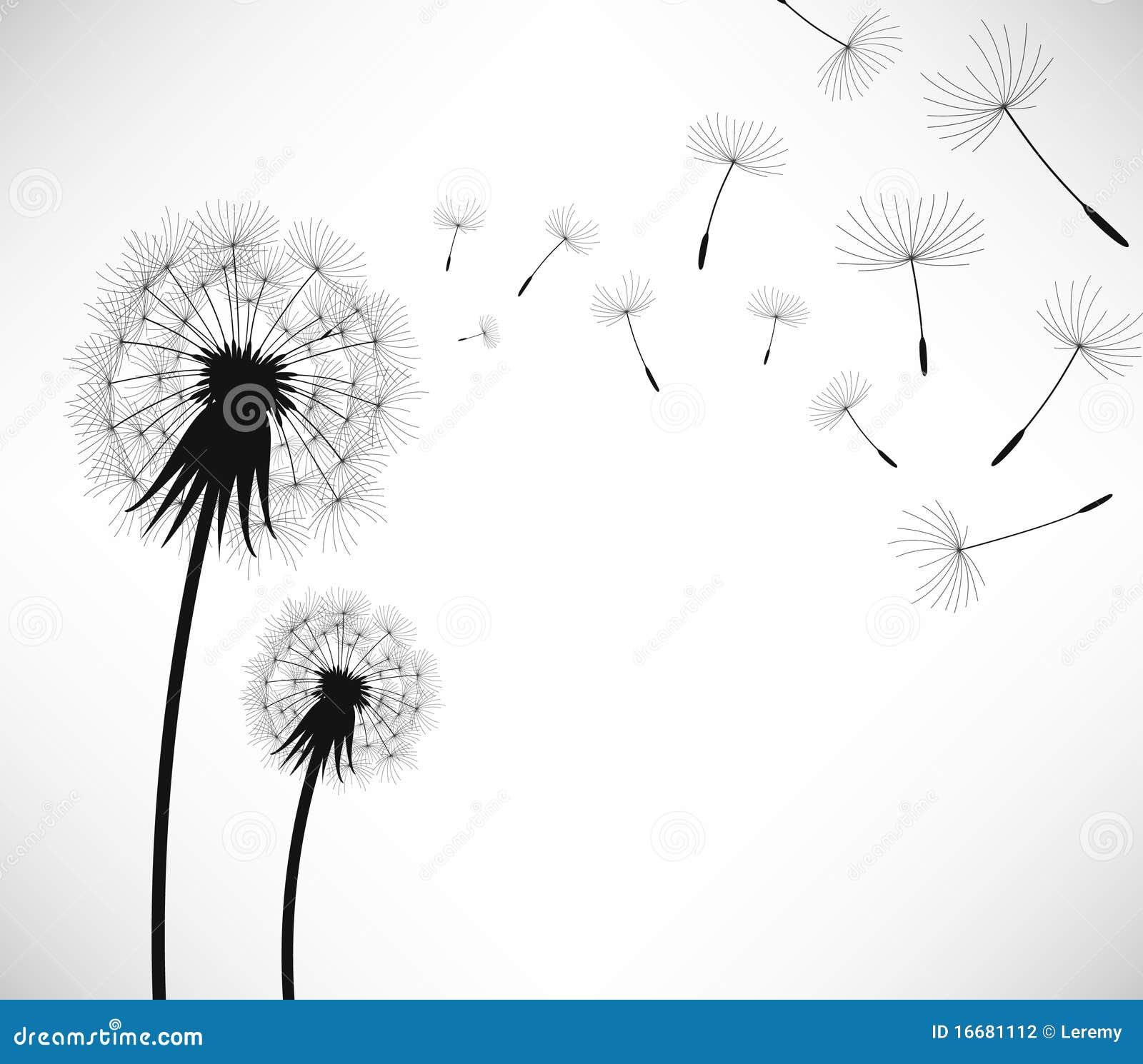 Dandelion Blowing Drawing Dandelion Blowing Drawing Tumblr Dandelion Blow