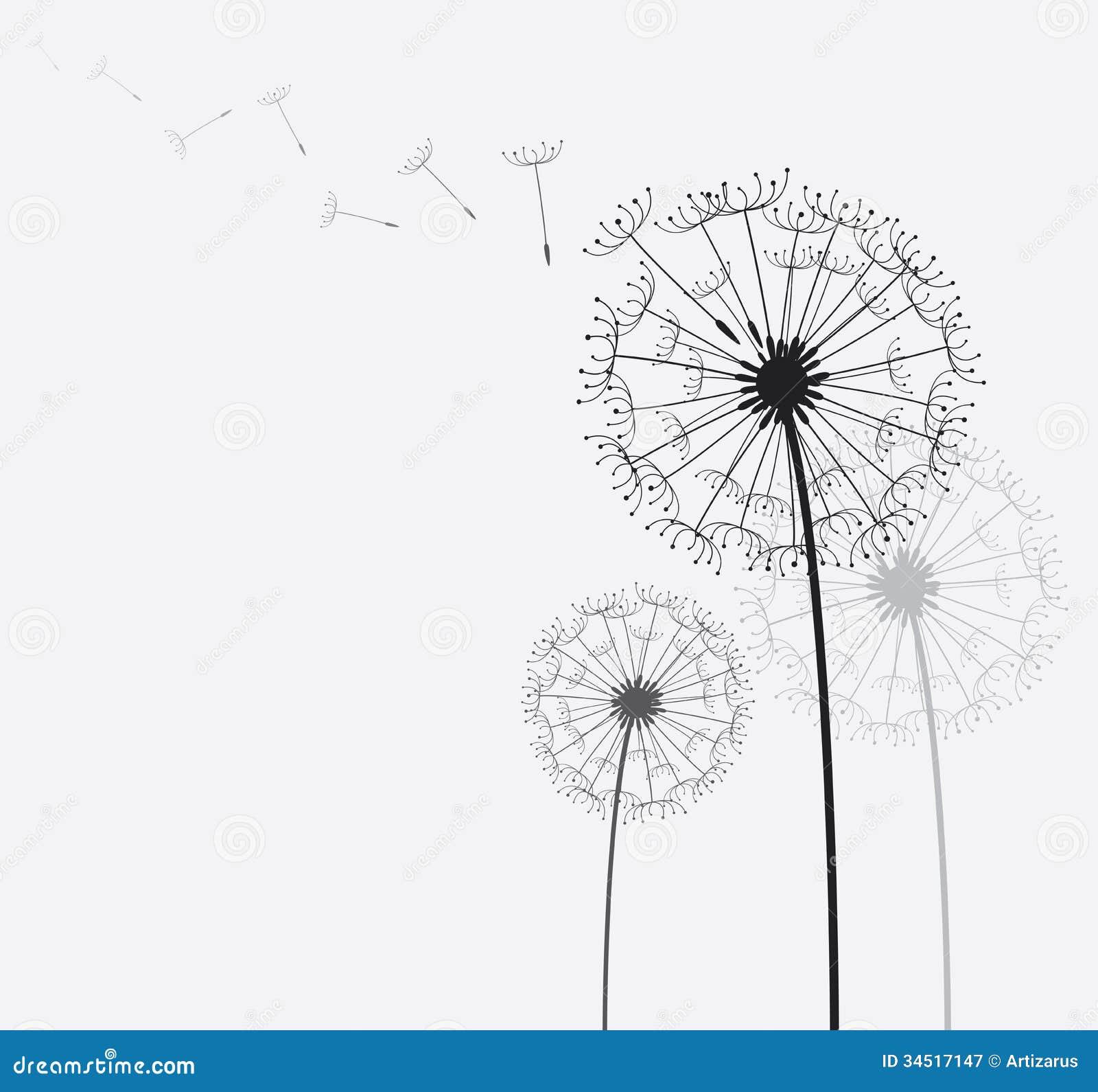 Dandelion Royalty Free Stock Photography - Image: 34517147