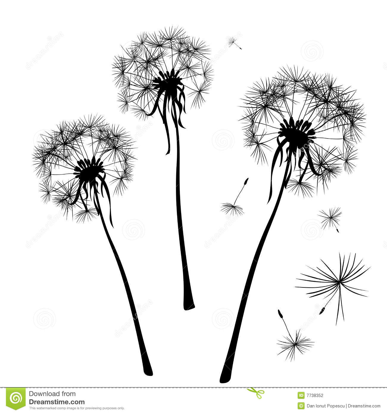 Dandelions Stock Photography - Image: 7738352