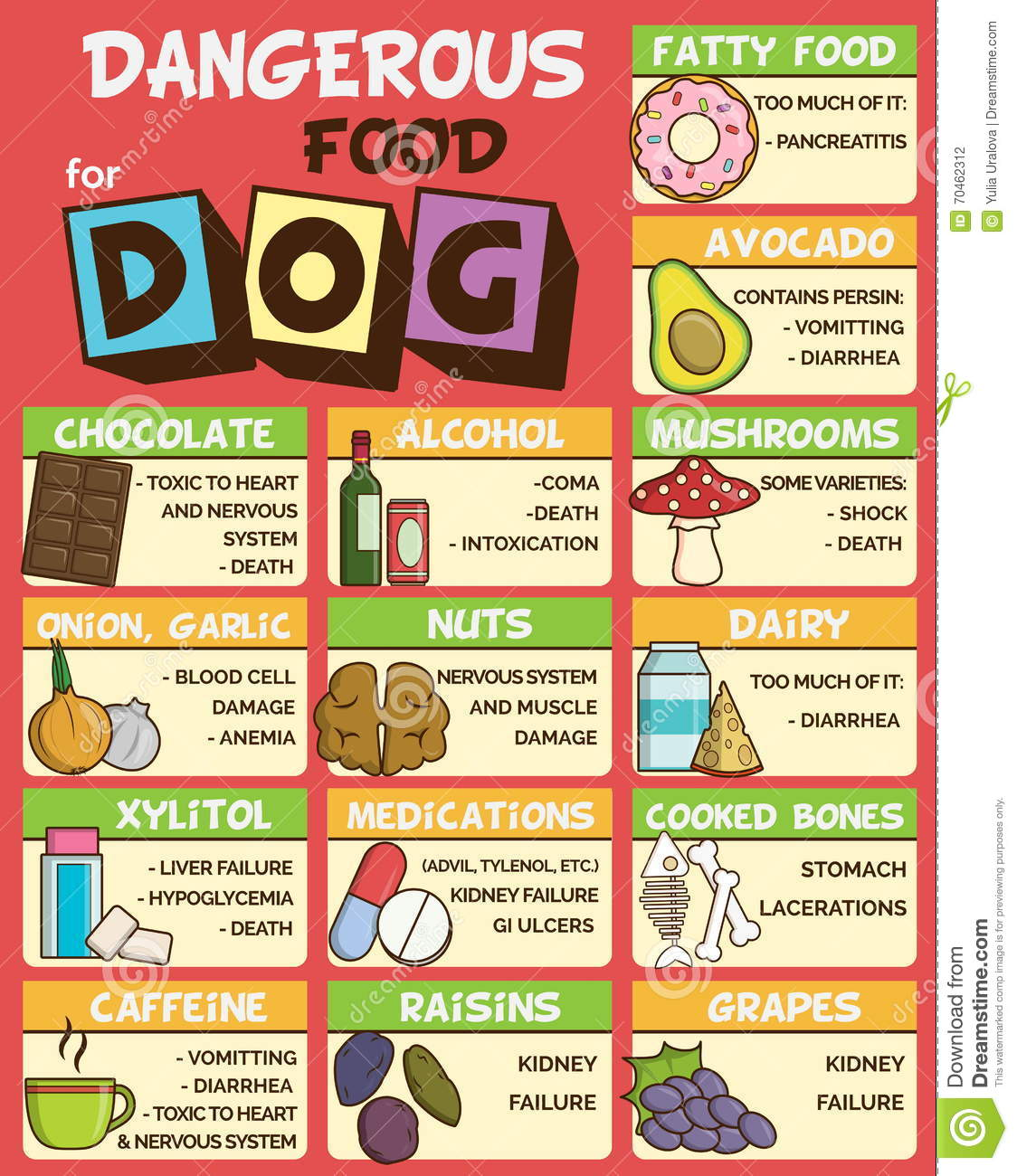 Dangerous Food For Dogs Stock Vector - Image: 70462312