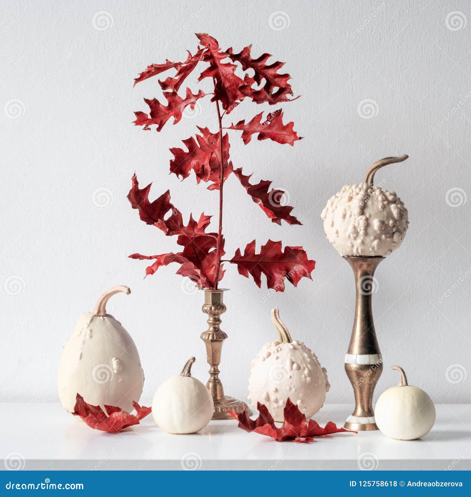 Danksagungsdekoration Minimaler Herbst spornte Raumdekoration an Auswahl von verschiedenen Kürbisen auf weißem Regal