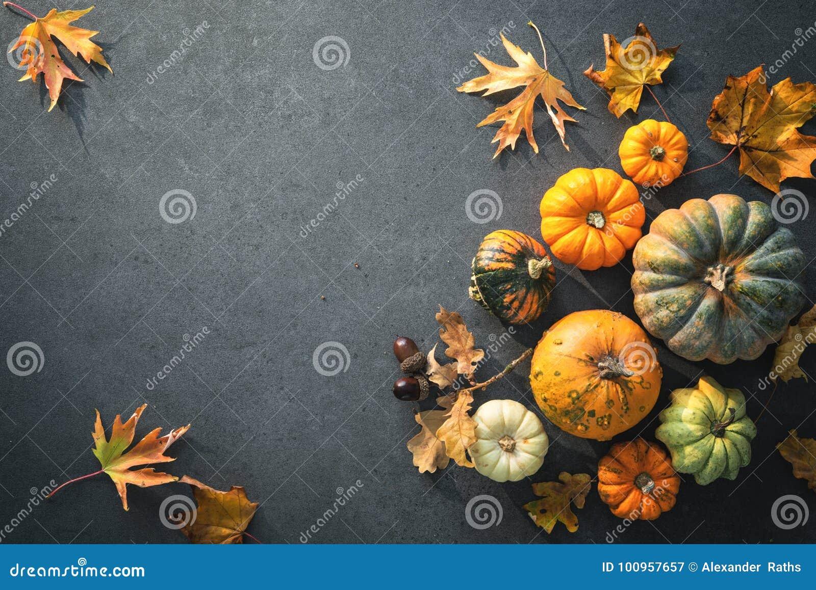 Danksagungstag oder herbstlicher saisonalhintergrund mit Kürbisen a