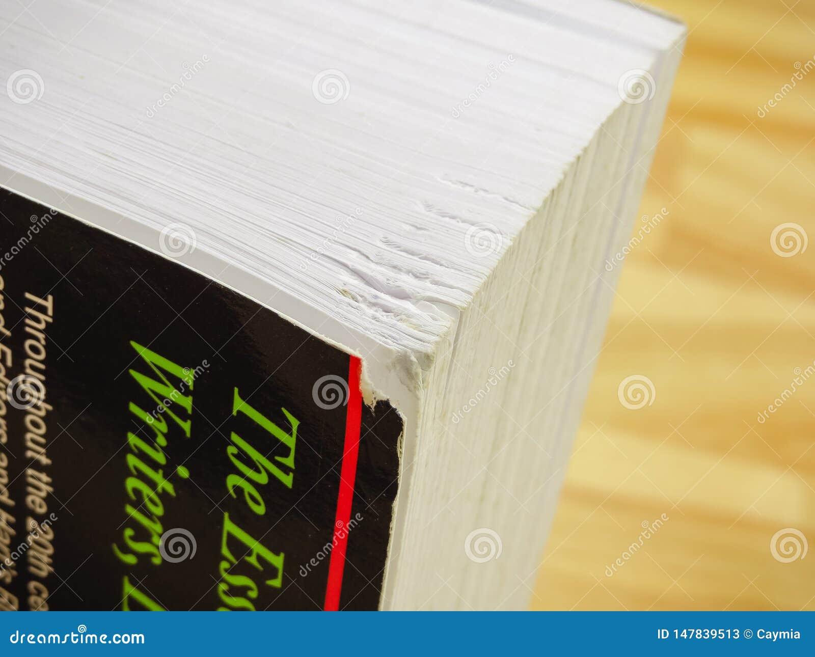 Danno da accantonare della fine spessa del libro degli scrittori su