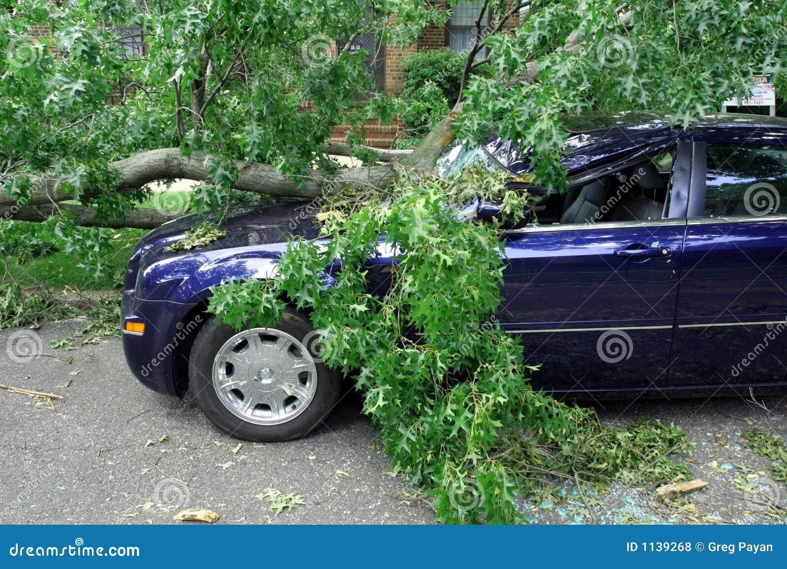 Dano da tempestade