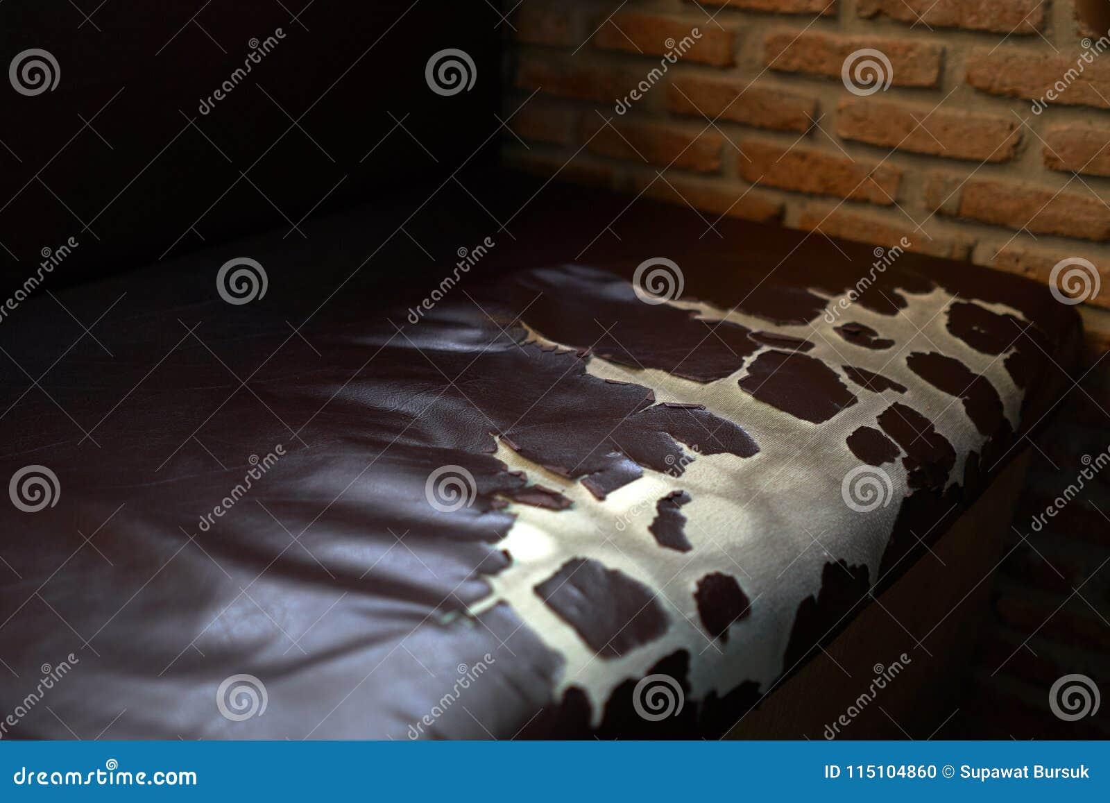 Dano longo da vida útil do sofá do couro do marrom escuro causado pelo uso do filme Para substituir duramente o assento de couro