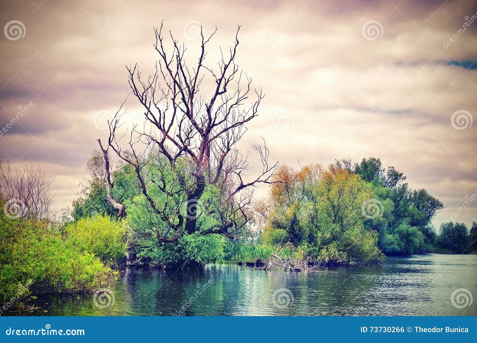 Danube River. Superb dramatic landscape in natural reserve of the Danube Delta - landmark attraction in Romania