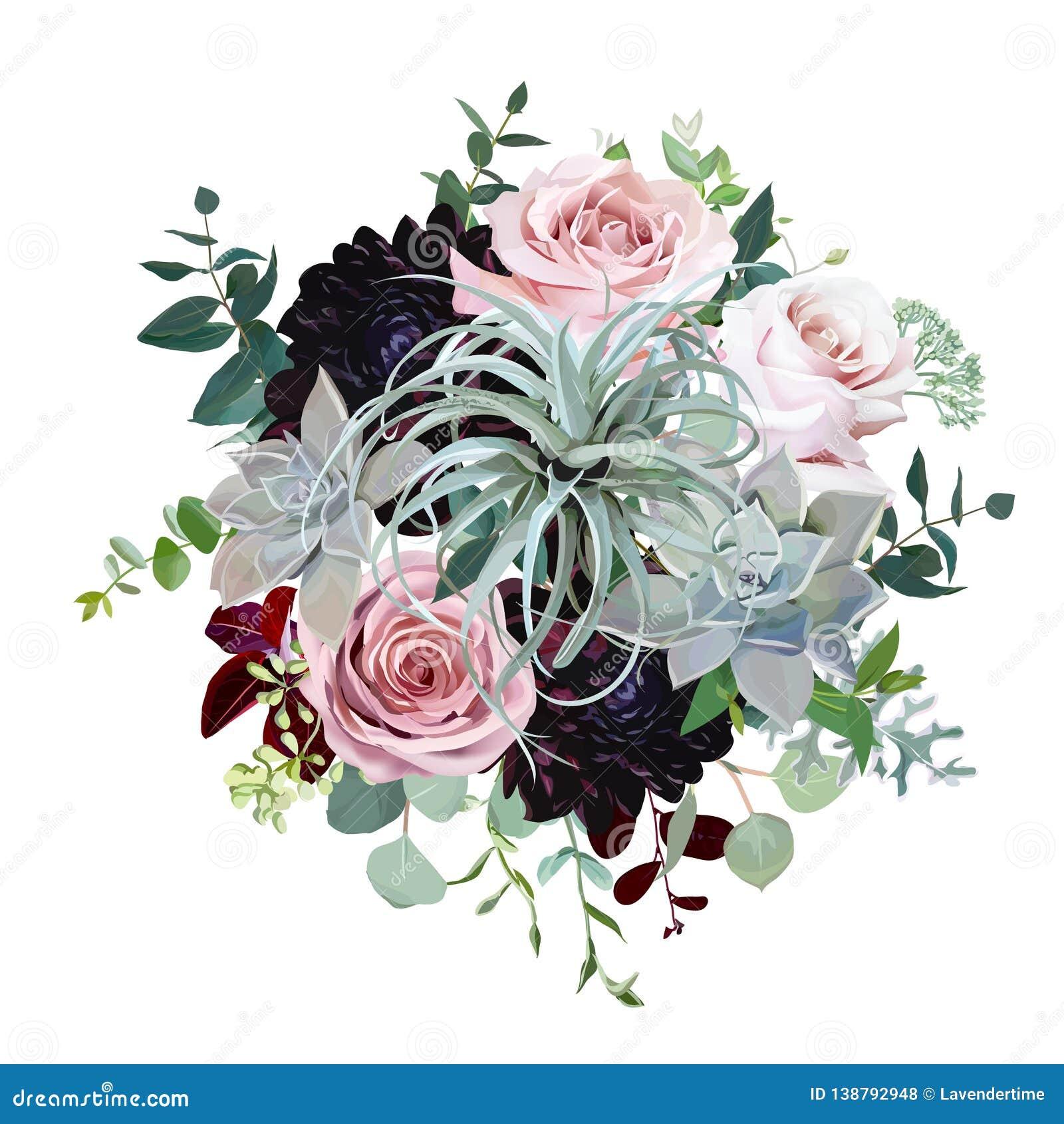 Dark Burgundy Dahlia Tillandsia Succulent Pale Roses Eucalyptus Greenery Stock Vector Illustration Of Boho Burgundy 138792948