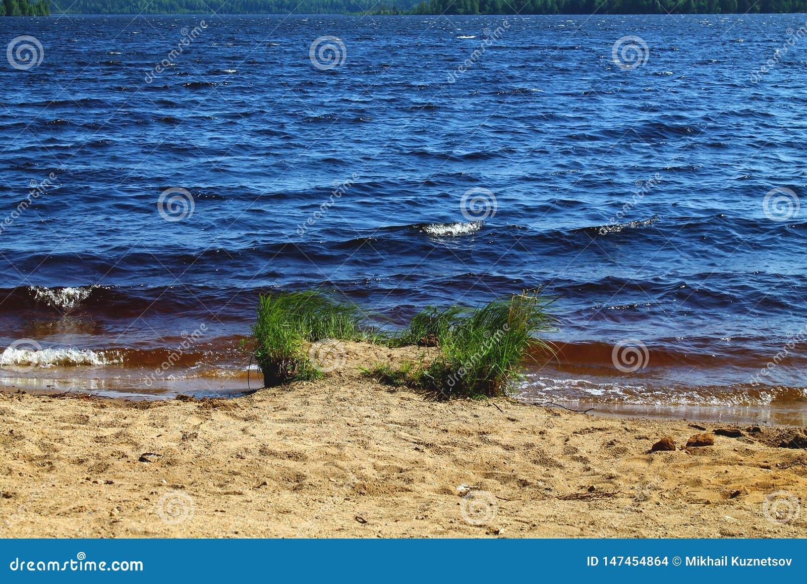Dark color sea water splashing to sand beach on summer day