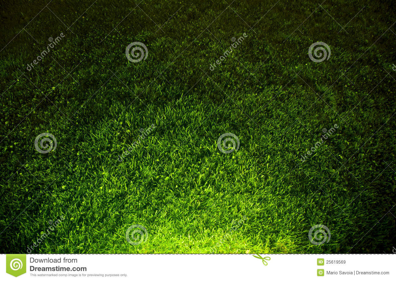 dark contrasted green grass background royalty free stock