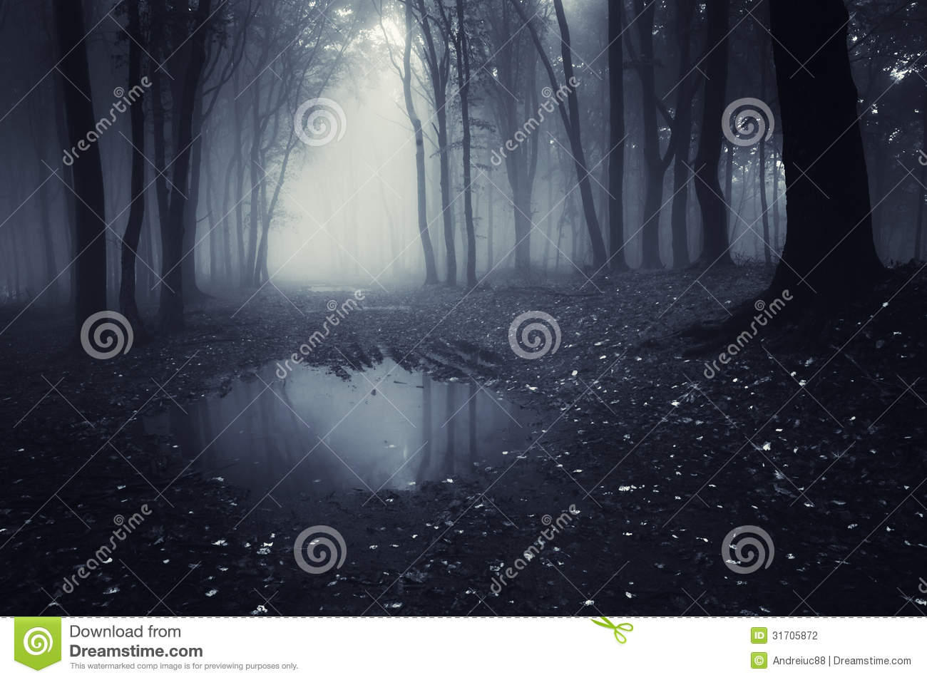 Dark forest with blue fog and lake