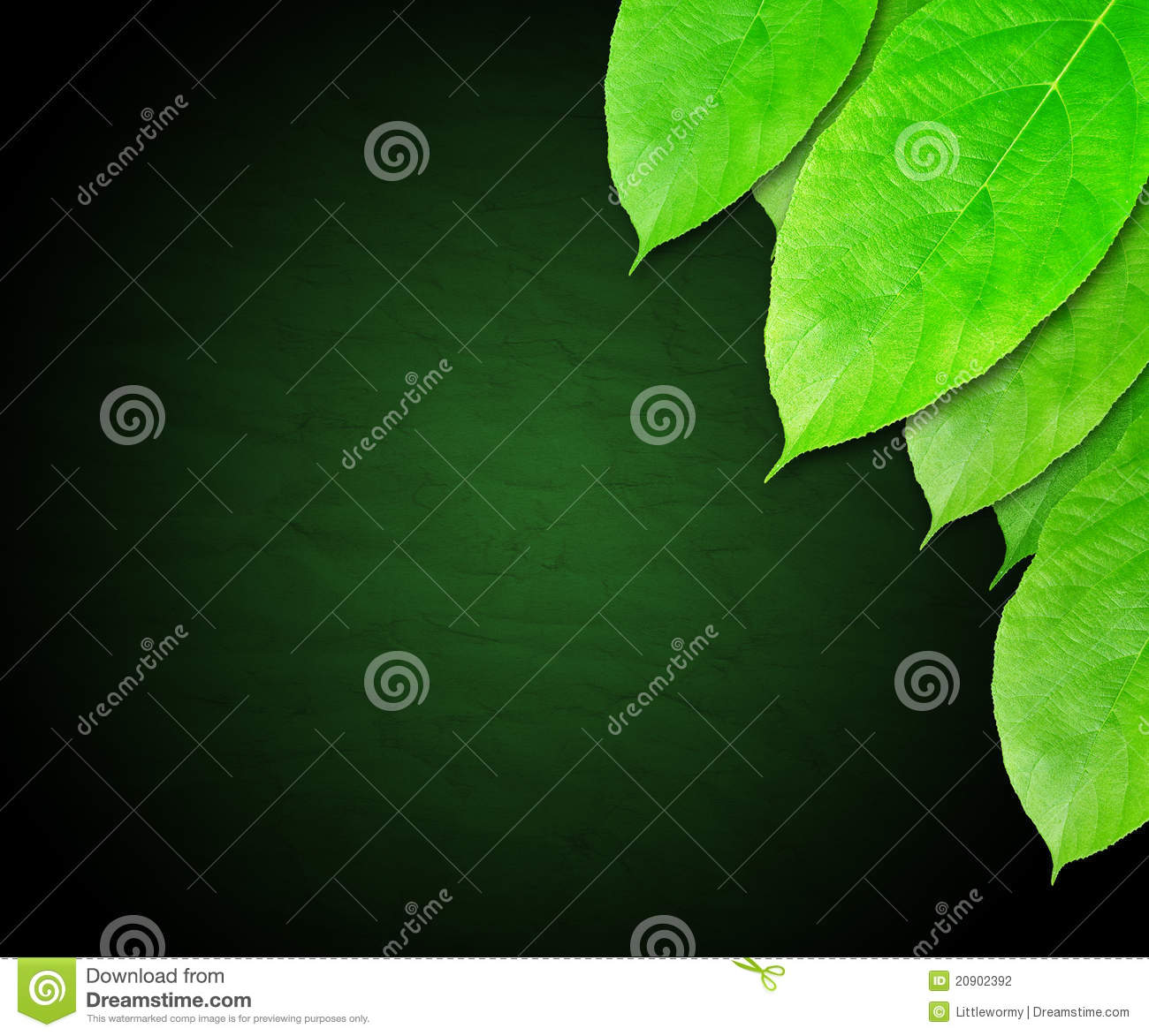 Dark Green Leaves Background Stock Photography - Image ...
