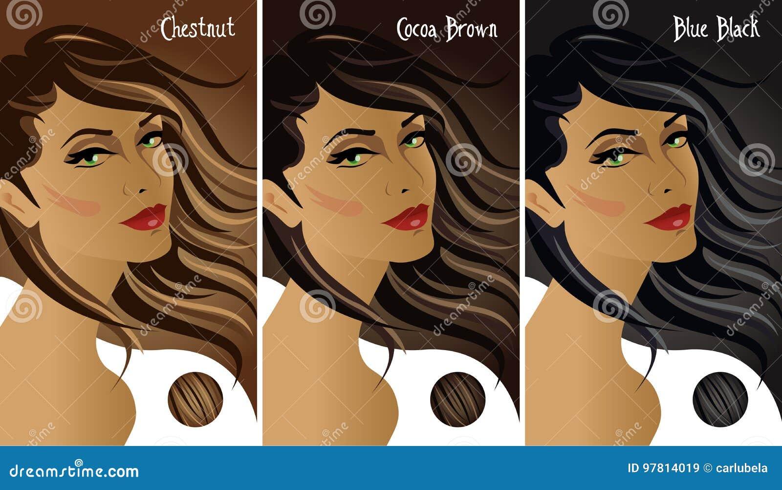 Dark Hair Colors Chart Stock Vector Illustration Of Hair 97814019