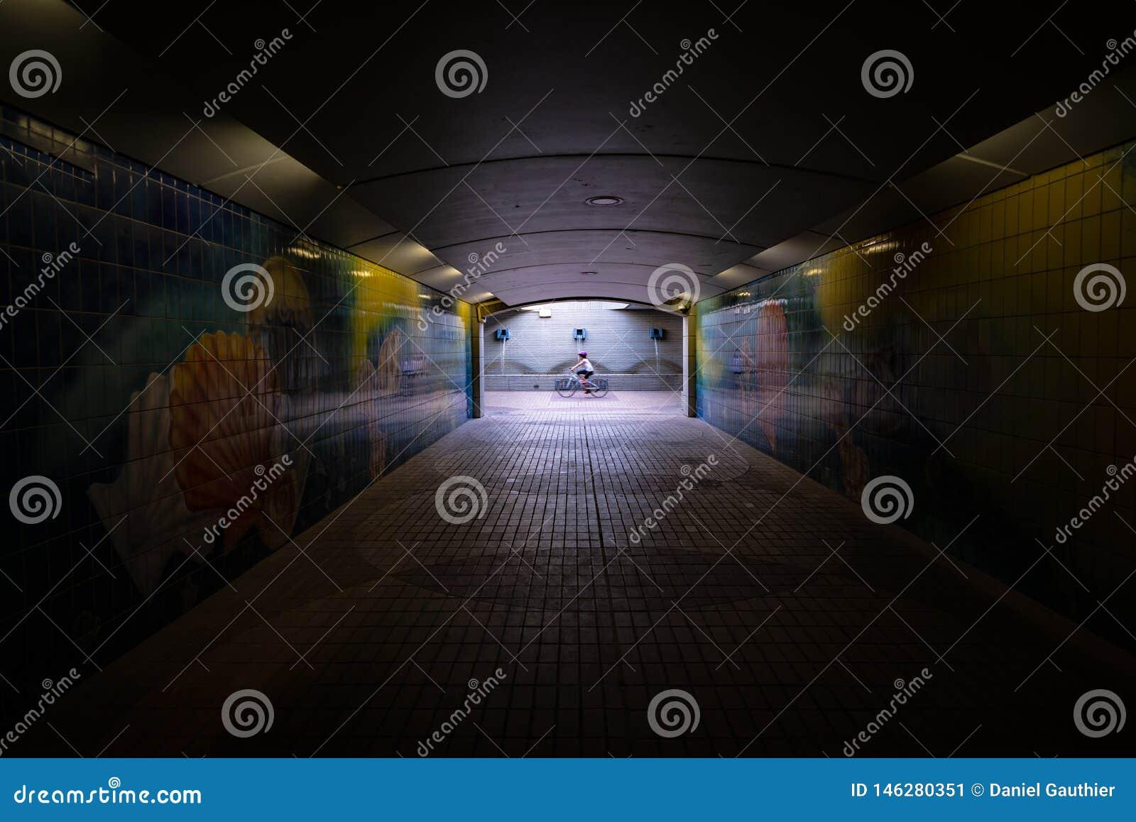 Dark pedestrian tunnel with one motion blurred cyclist, Abu Dhabi