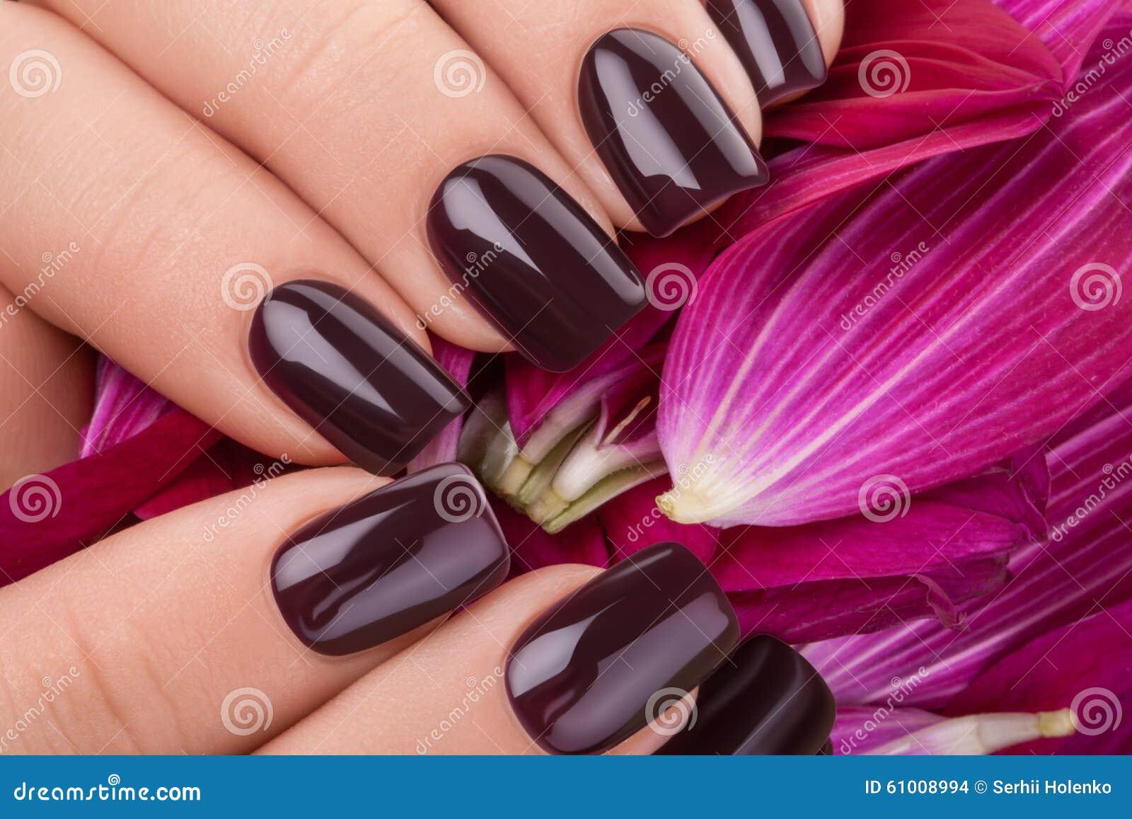 Dark red nail polish. stock photo. Image of closeup, acrylic - 61008994