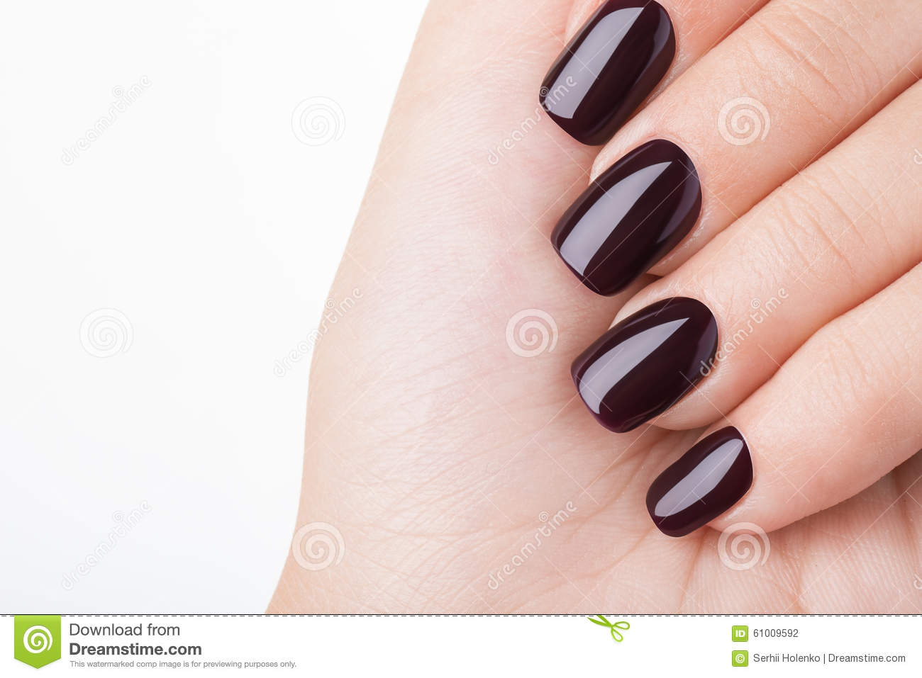 Dark red nail polish. stock photo. Image of hygiene, closeup - 61009592