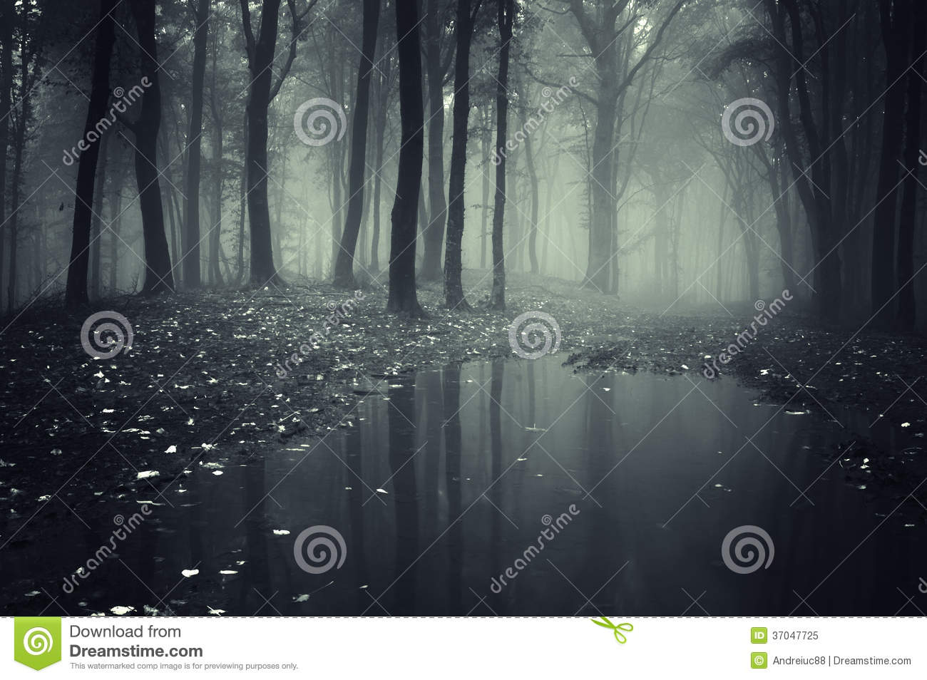 Dark spooky forest with mysterious fog and lake