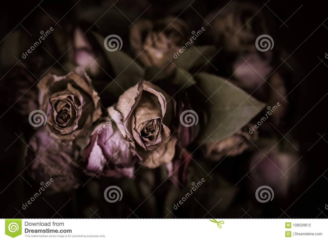 Dark vintage style image of a bouquet of roses