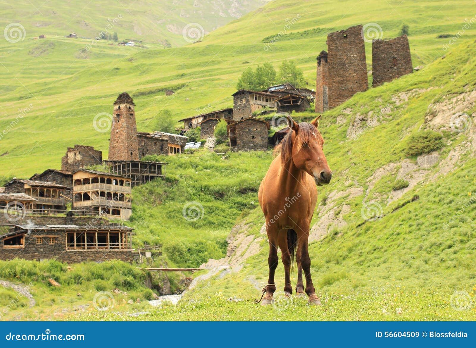 Dartlo-Dorf Tusheti-Region (Georgia)