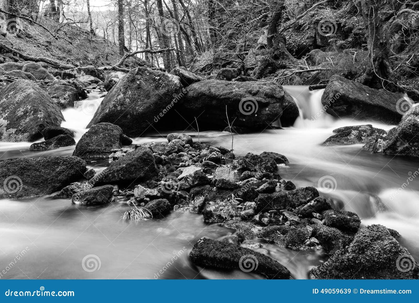 Dartmoor Black and White Landscape