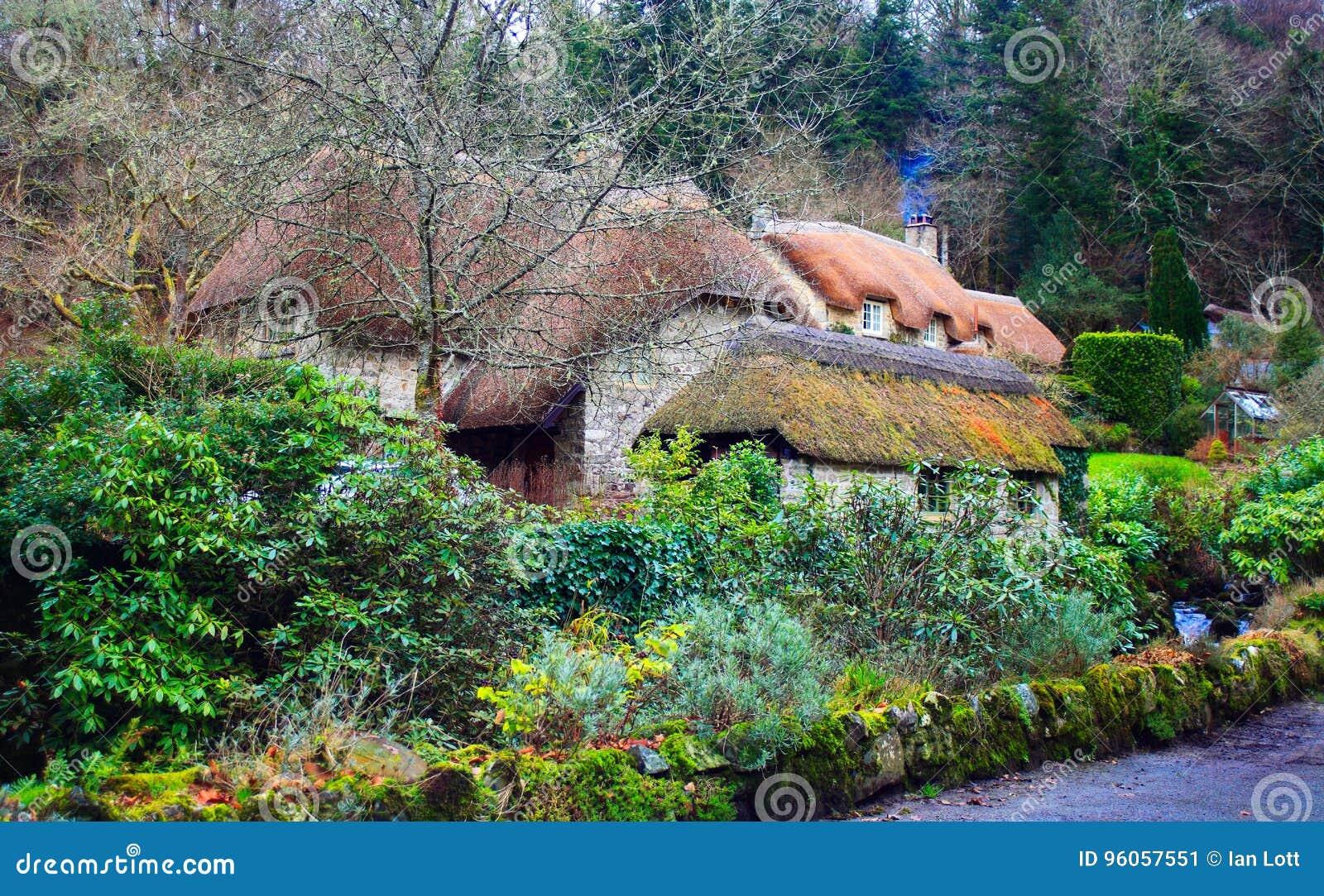 Dartmoor a couvert des cottages de chaume dartmoor LE R-U