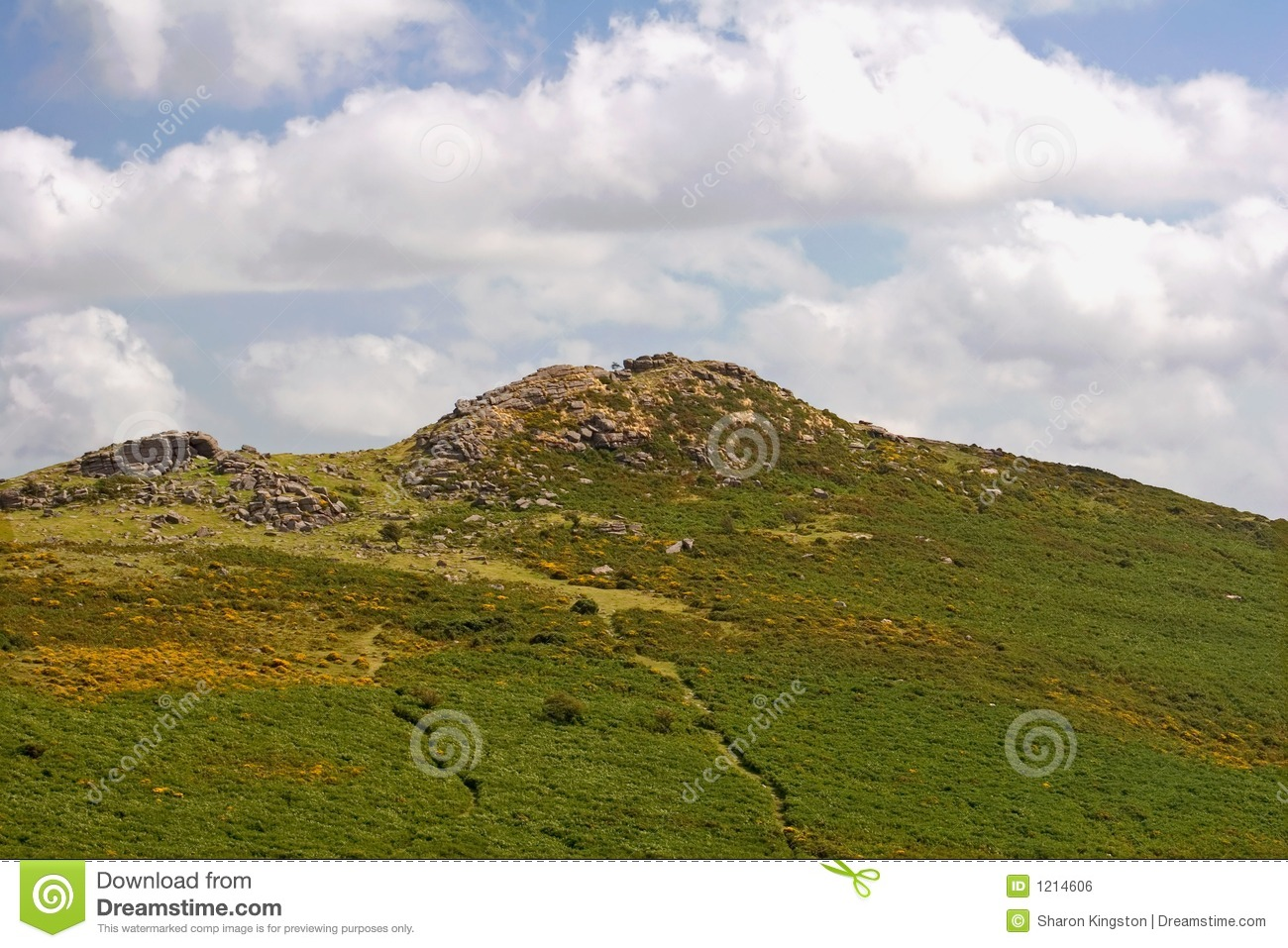 Dartmoor National Park Royalty Free Stock Image - Image: 1214606: dreamstime.com/royalty-free-stock-image-dartmoor-national-park...