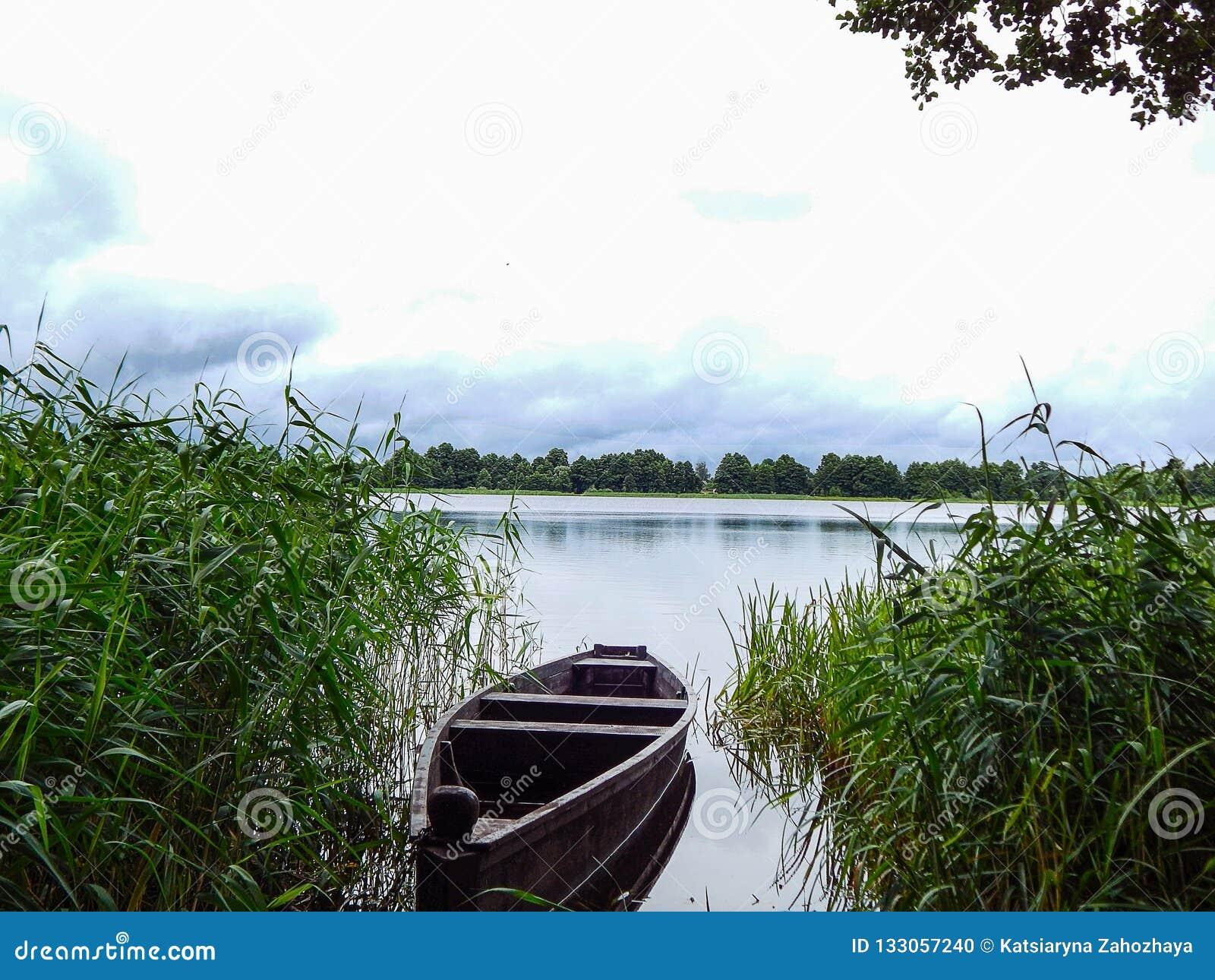 Das Boot auf dem See zwischen gr?nem Gras