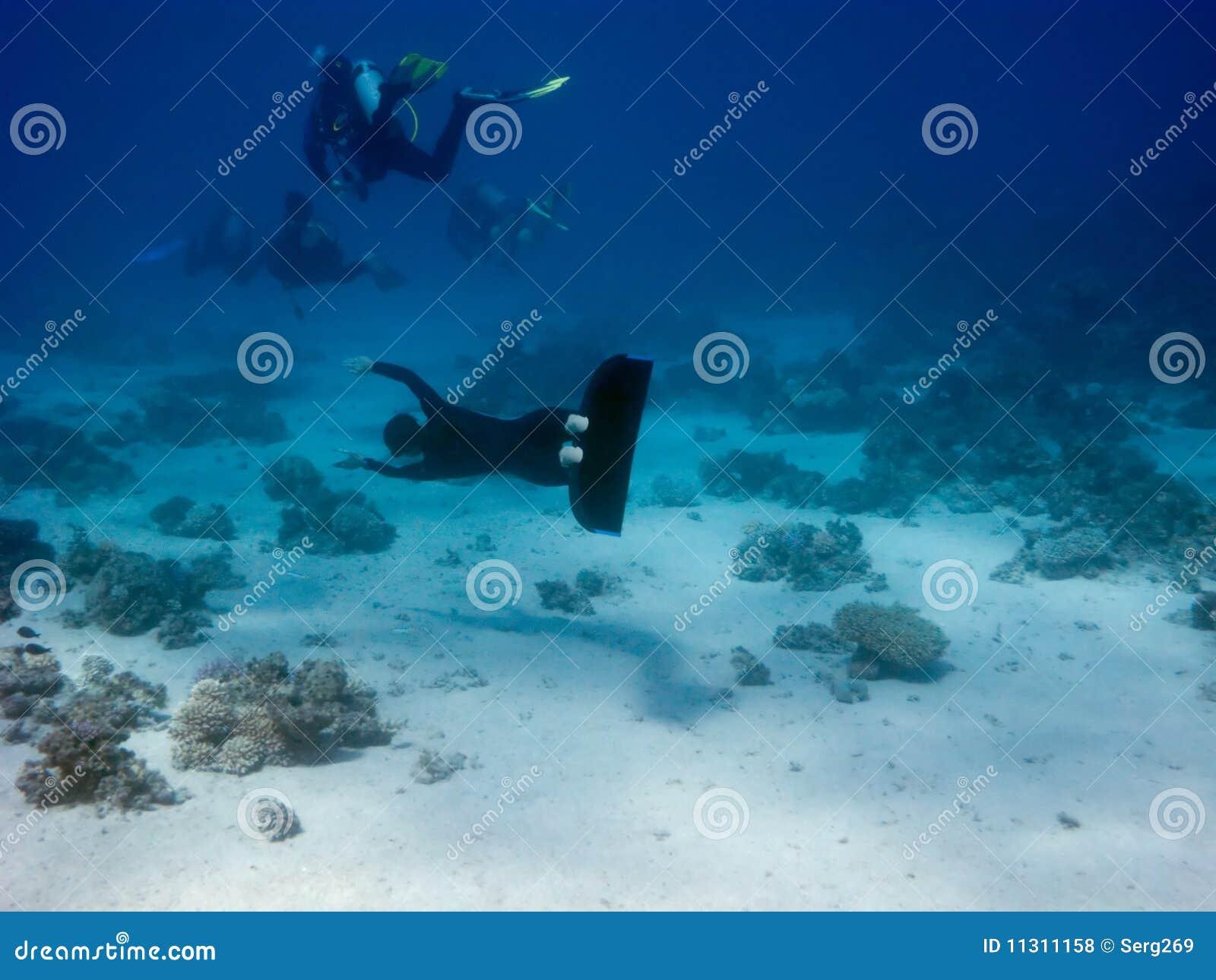 Das freediver versucht, einen Taucher durch Flosse abzufangen