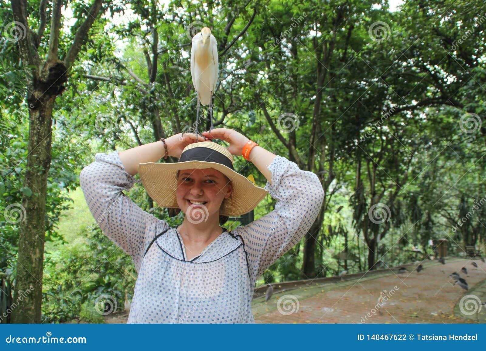 Das junge weiße Mädchen, auf dessen Hutkuhreiher steht, ist der zahlreichste Vogel der Reiherfamilie