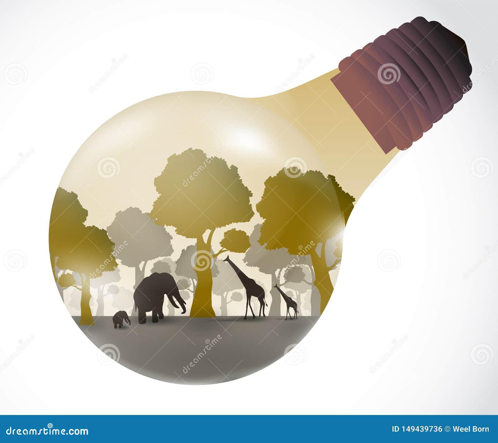 Das Licht des natürlichen Konzeptes