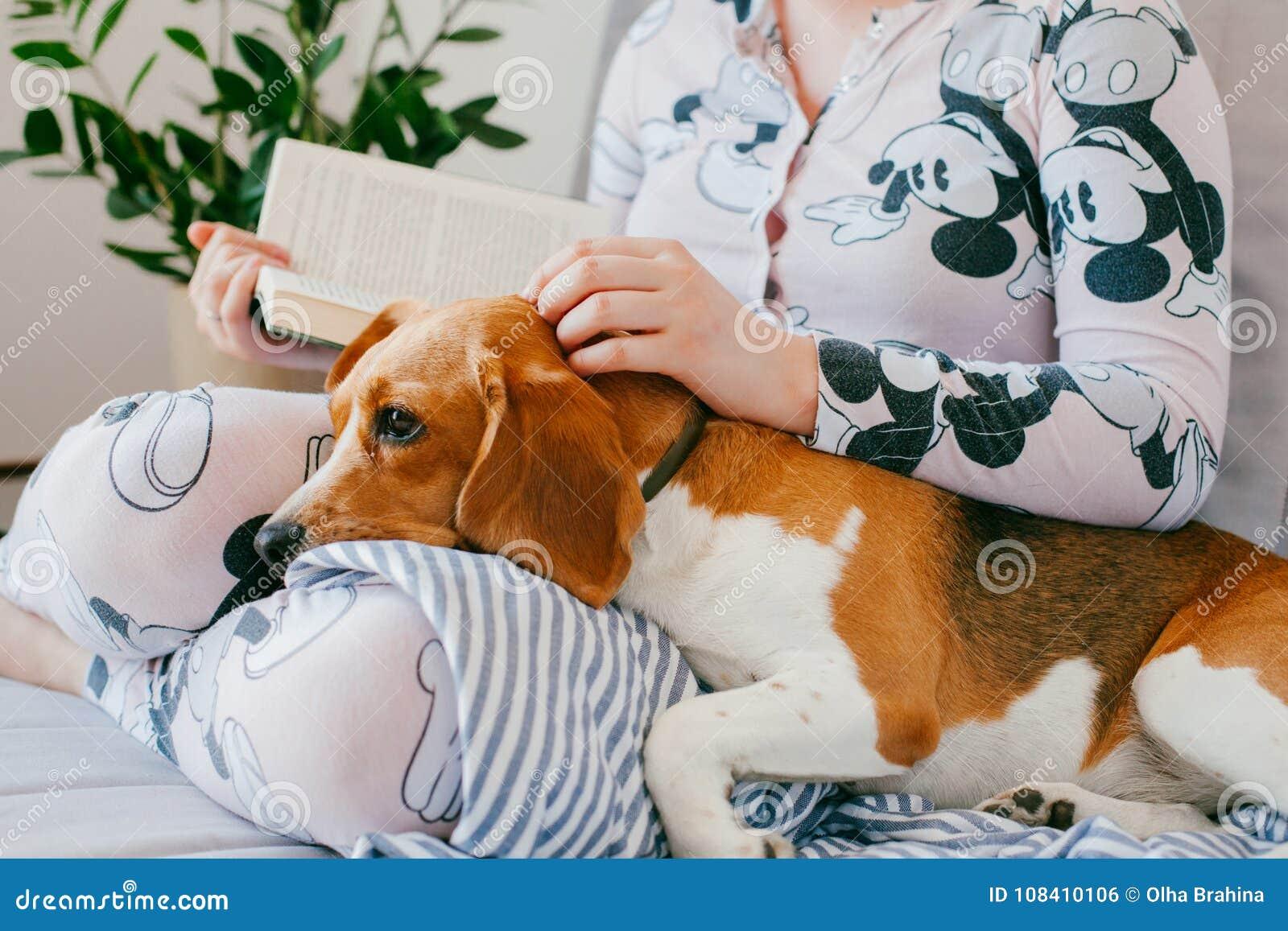 Das Mädchen in den Pyjamas liest ein Buch zu Hause mit einem Spürhundhündchen Spürhund ist Lügen auf Mädchen ` s Knien