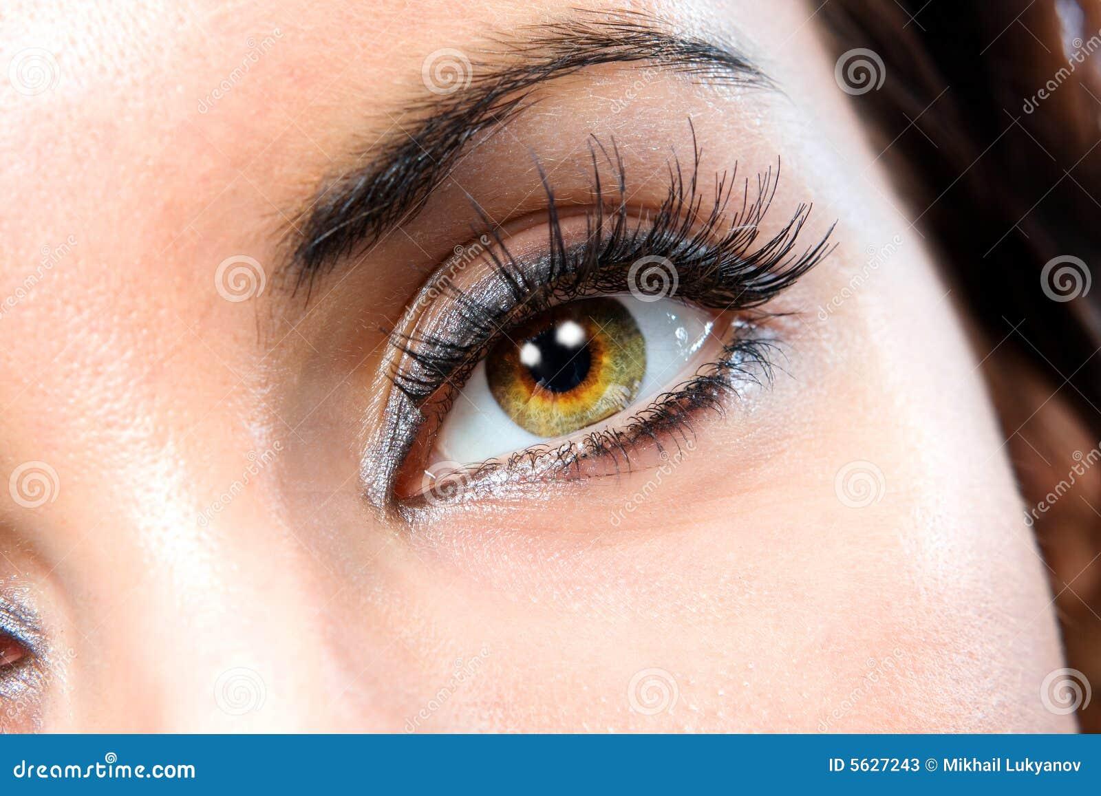 Das makro weibliche Auge
