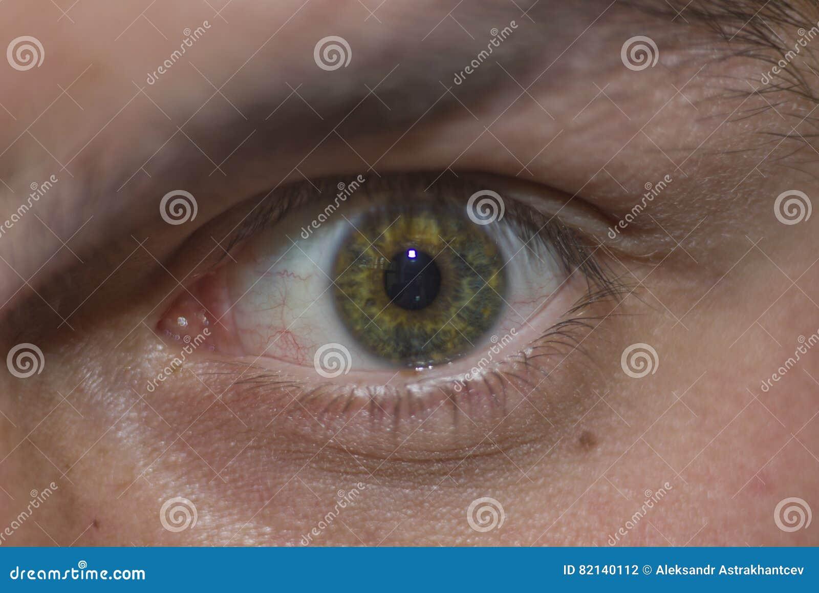 Das Menschliche Auge Betrachtet Mich Stockfoto - Bild von blau, auge ...