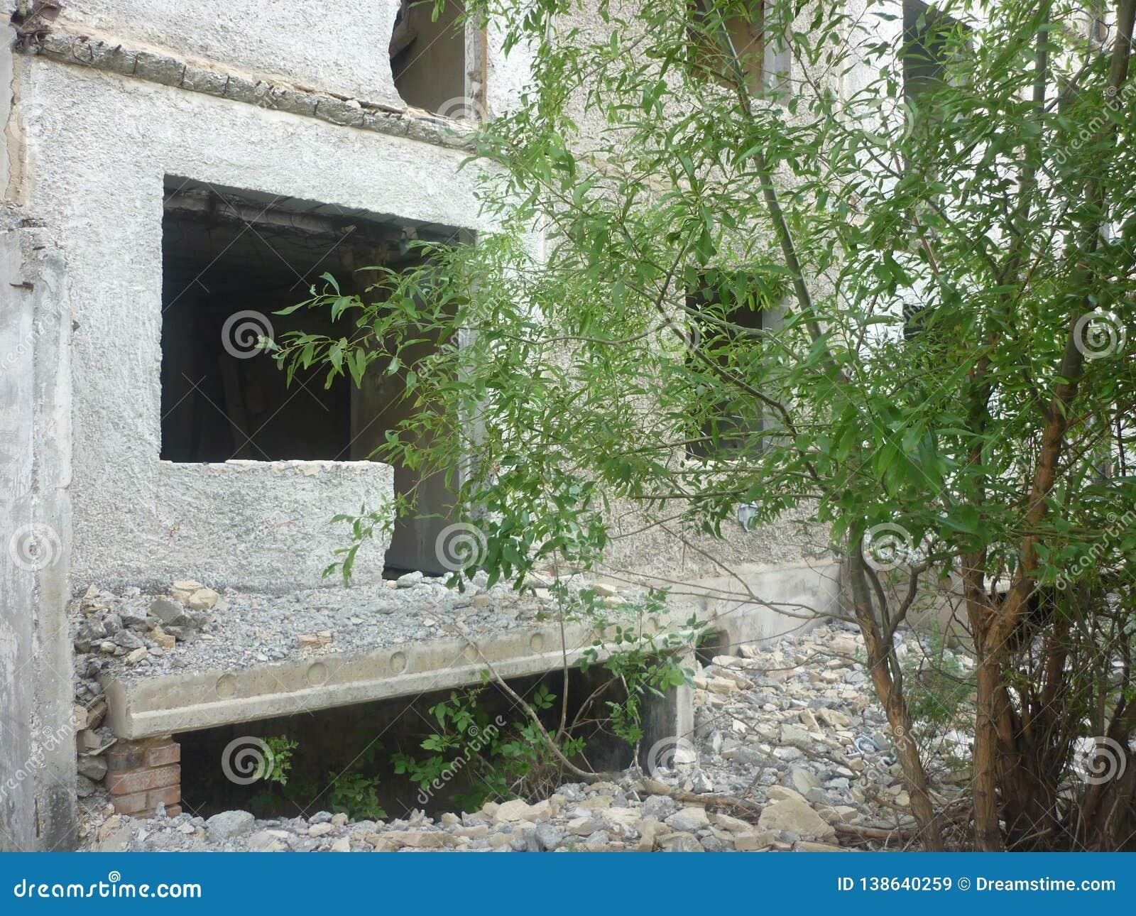 Das ruinierte Haus, das ich einmal herein lebte