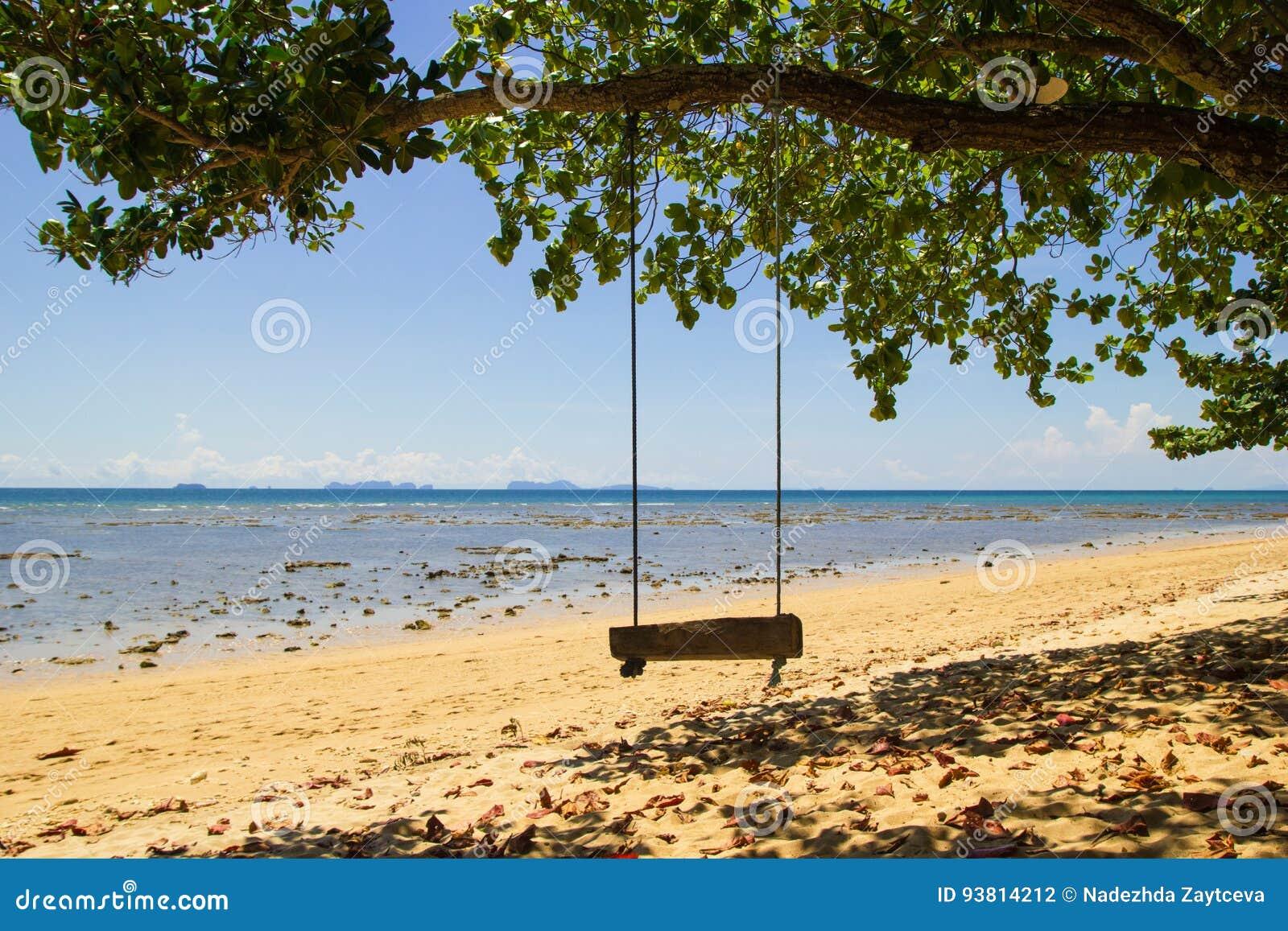 Das Schwingen unter dem Baum auf dem Sandstrand nahe zum Meer