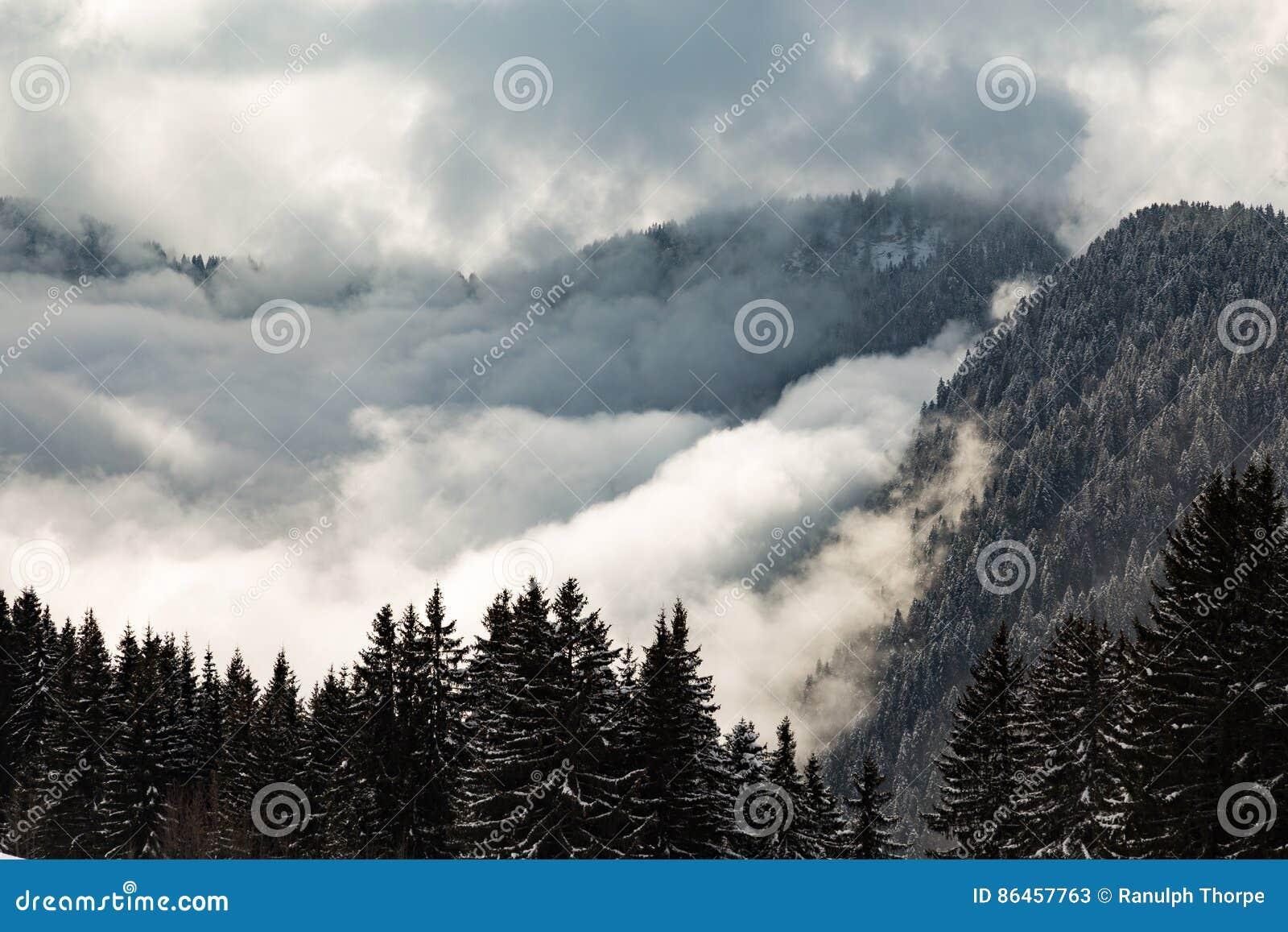 Das Tal, das in den Wolken mit Baum bedeckt wurde, bedeckte Berge