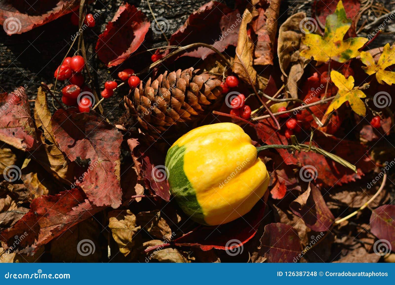 Das Wunder der Herbstmonate, Oktober, November
