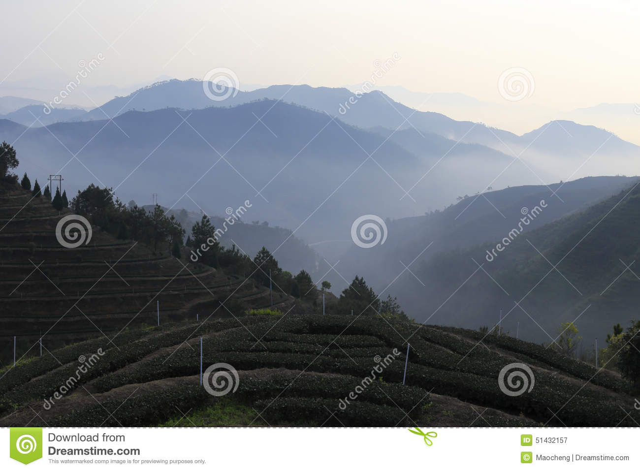 Anxi China  city images : ... china known as chinese tea capital anxi is the hometown of chinese