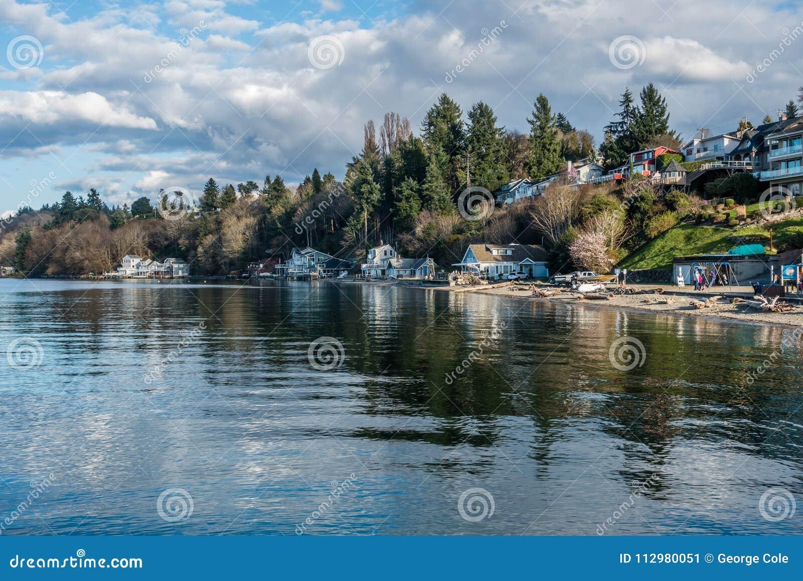 Dash Point Shoreline Landscape 3