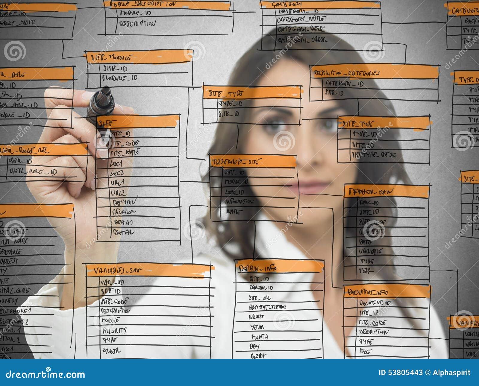 Database software development