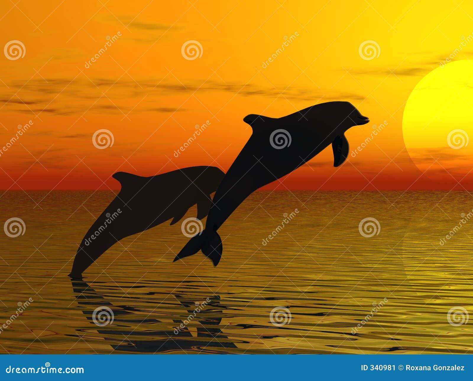 Dauphins nageant deux