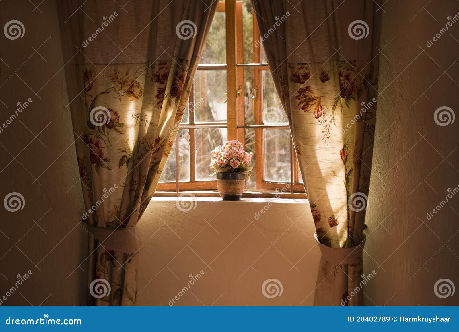 Davanzale pieno di sole della finestra con la pianta e le - Davanzale interno finestra ...