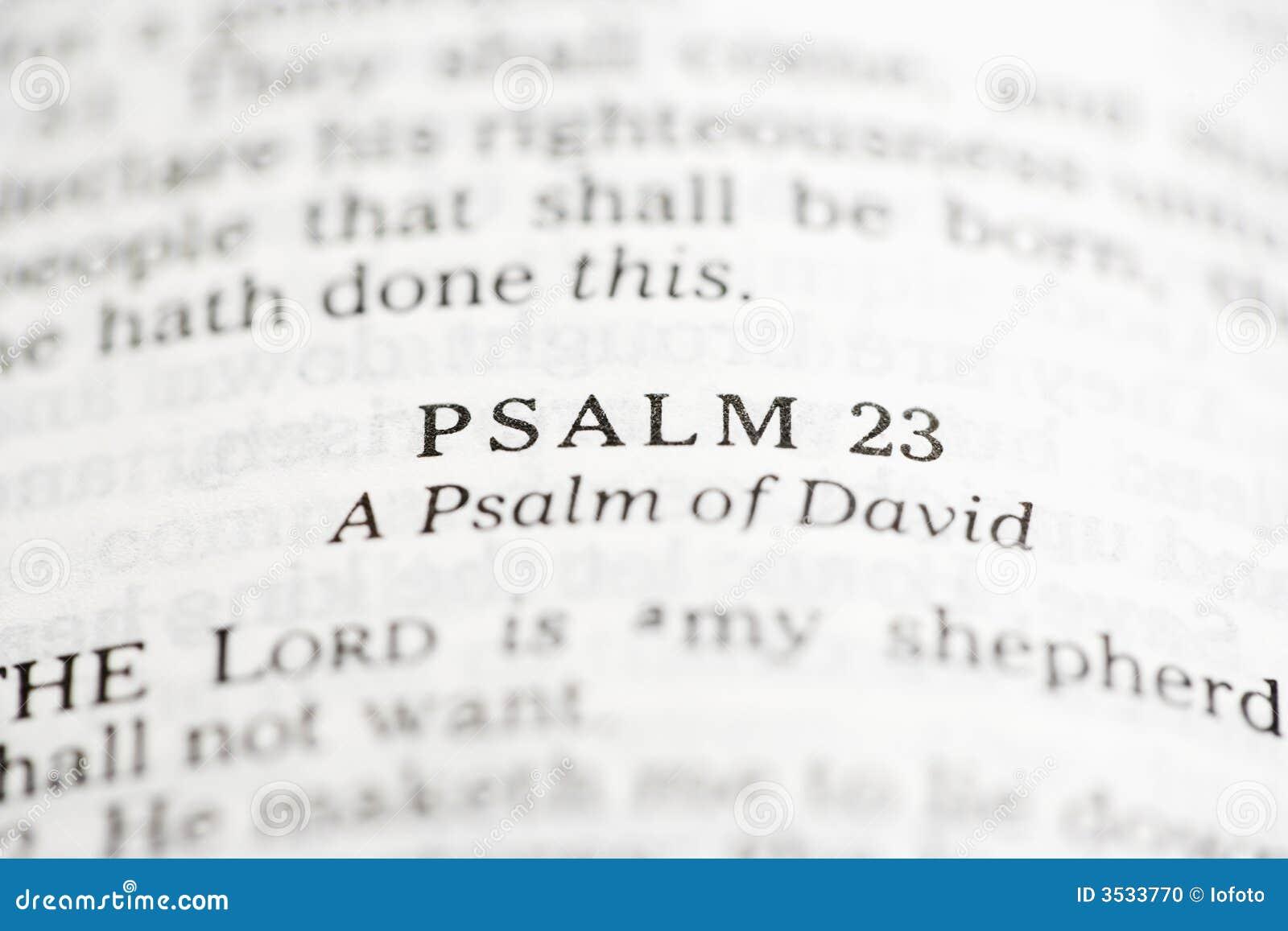 David psalm