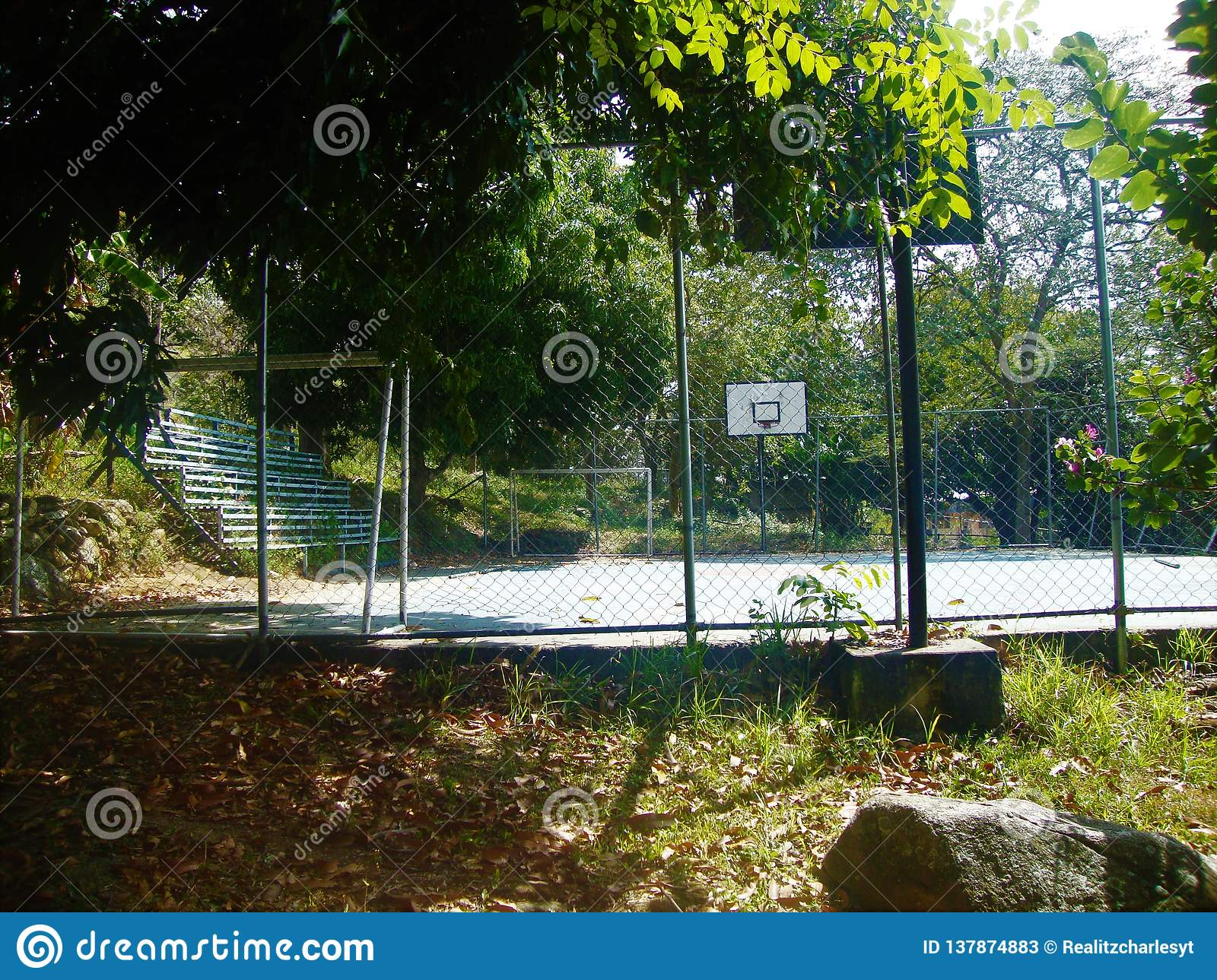 This day plays, to the abandoned court.