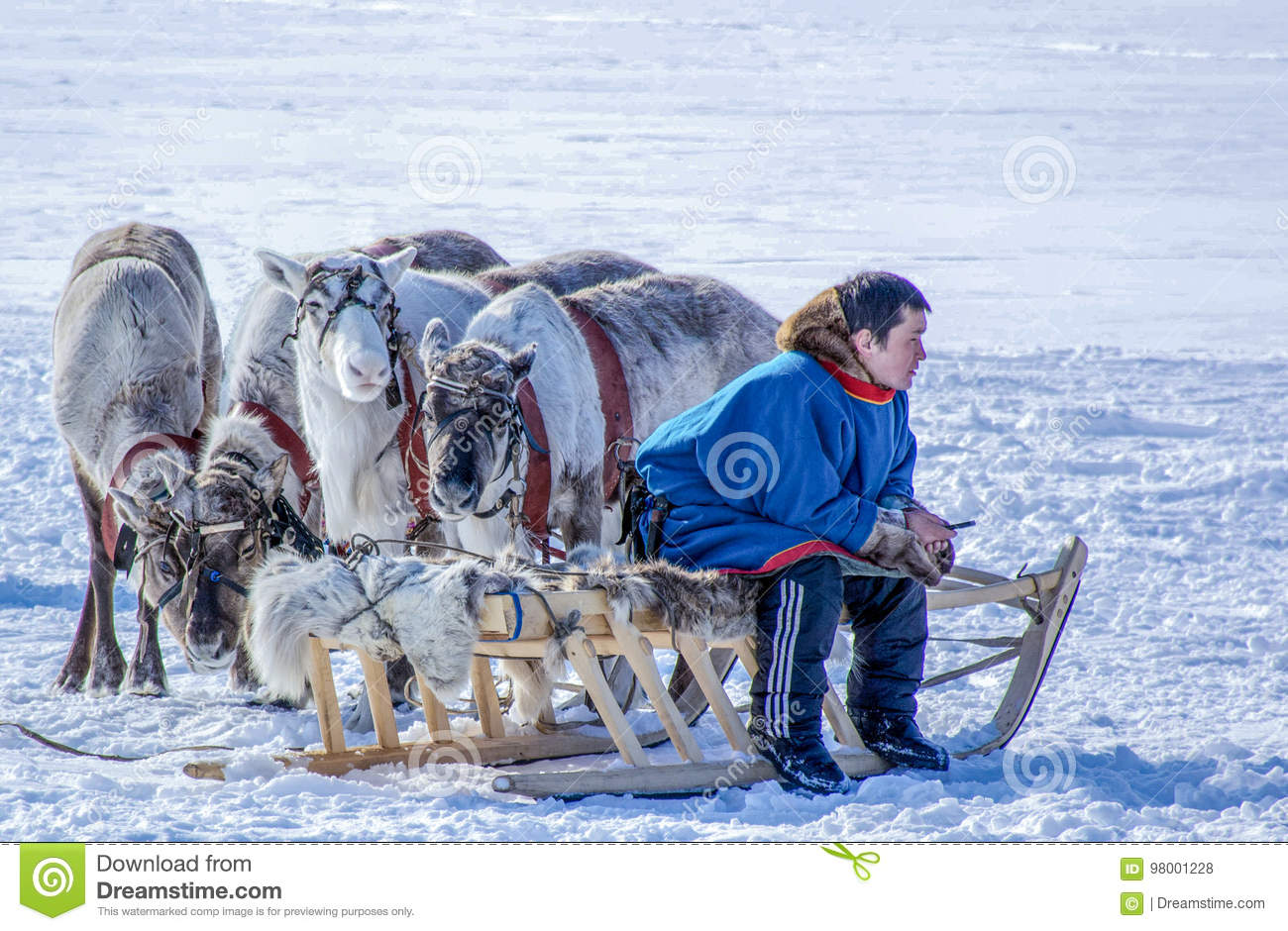 Day of the reindeer herder on the Yamal Peninsula.