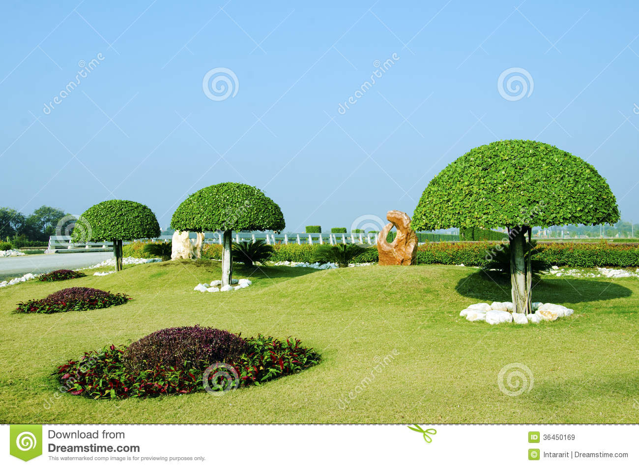 D coration d 39 arbre de jardin images libres de droits for Arbre decoration