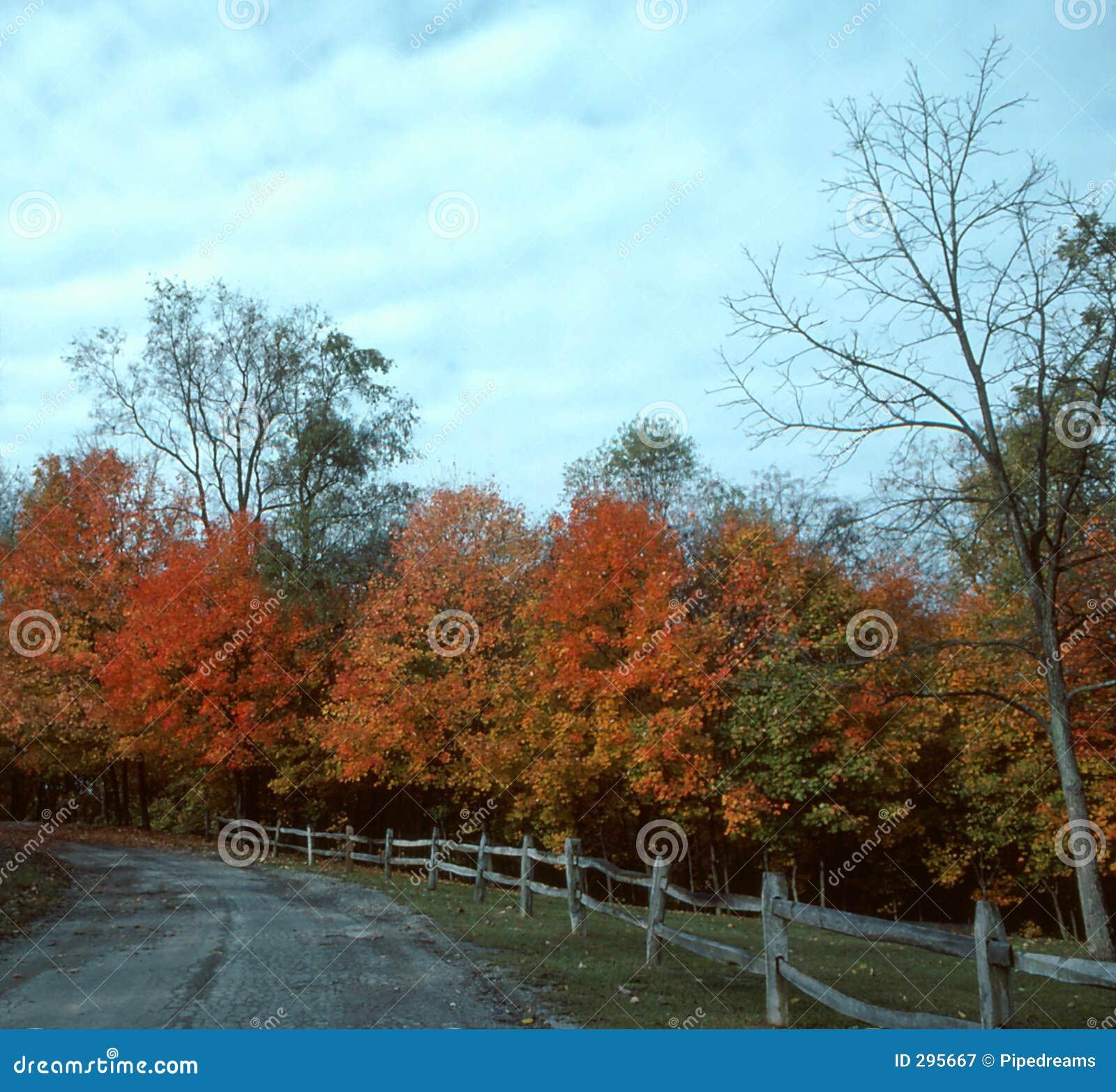De Aandrijving van de herfst--1