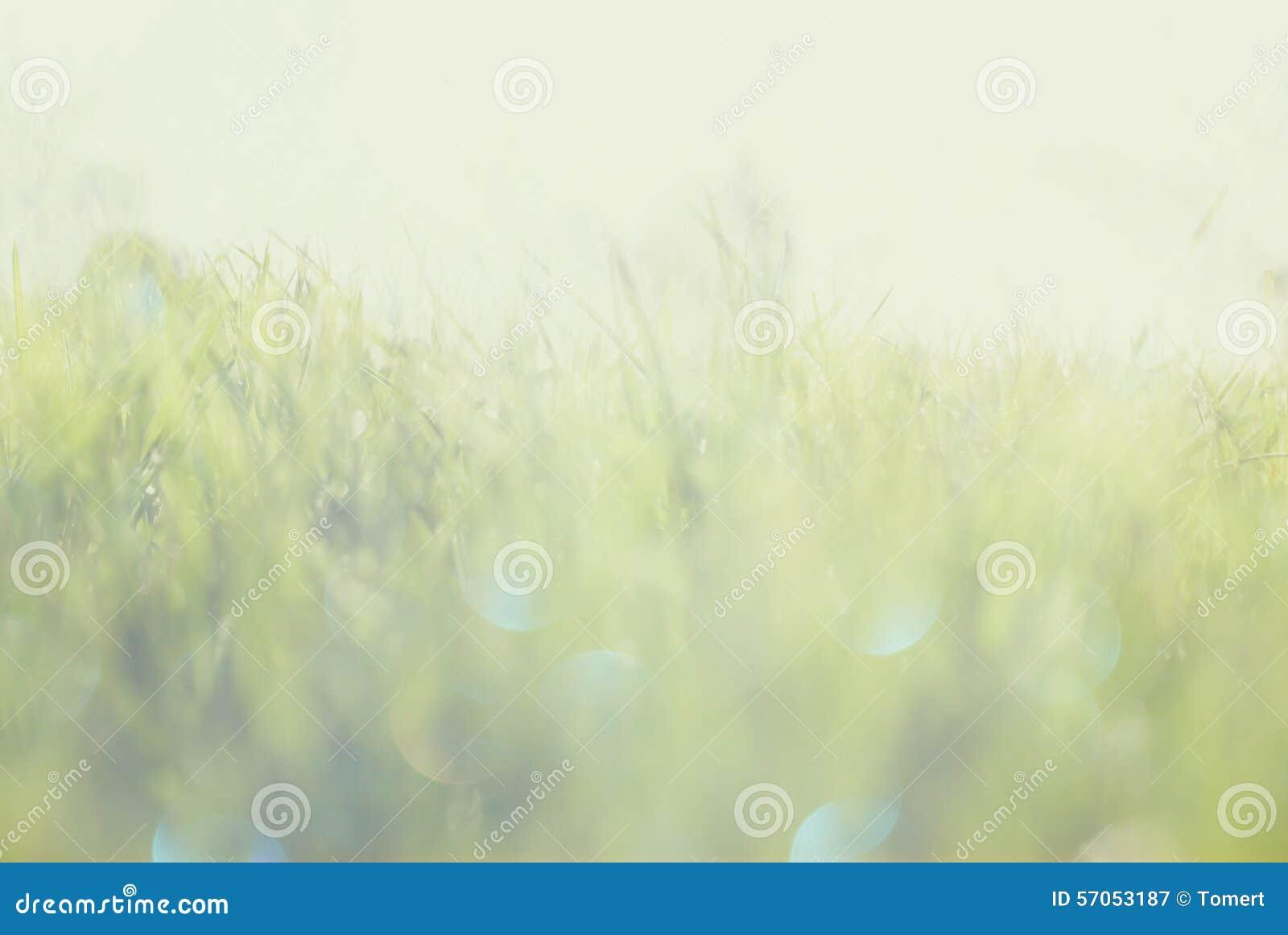 De abstracte foto van licht barstte onder gras en schittert bokeh lichten het beeld is vaag en gefiltreerd