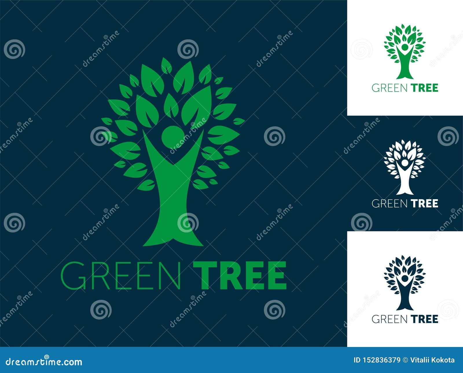 De abstracte vectorillustratie van het boomembleem