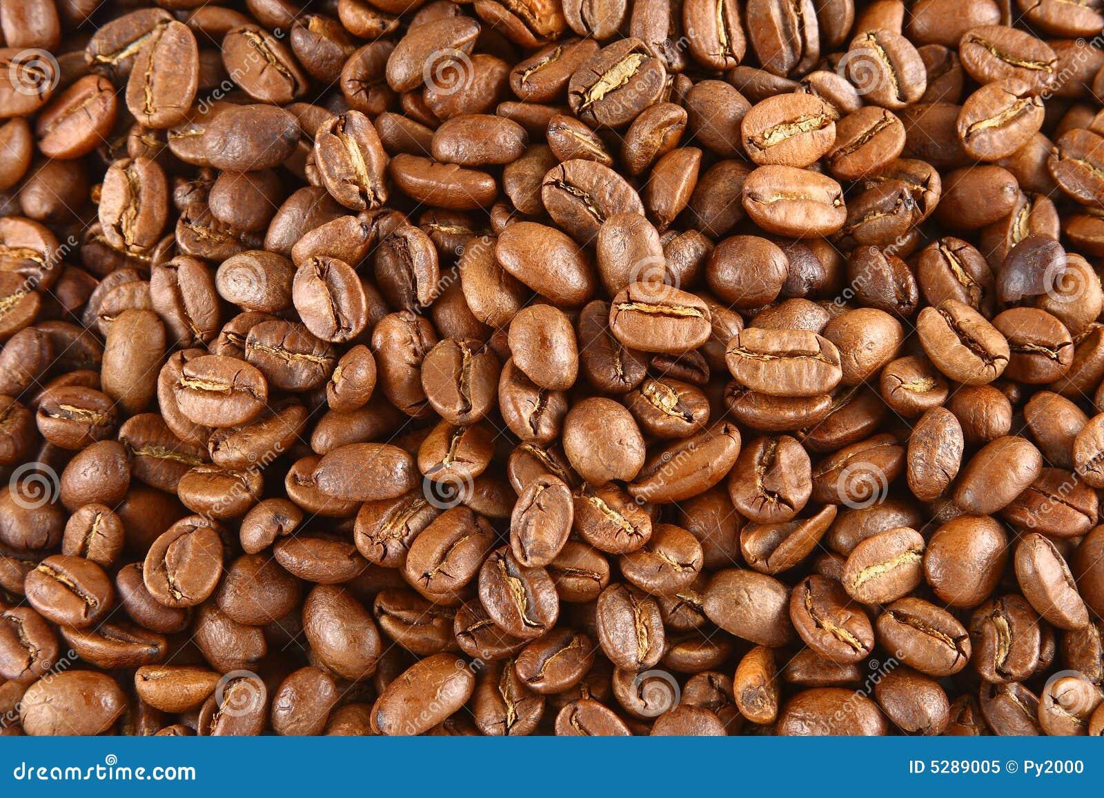 De Achtergrond van de Bonen van de koffie