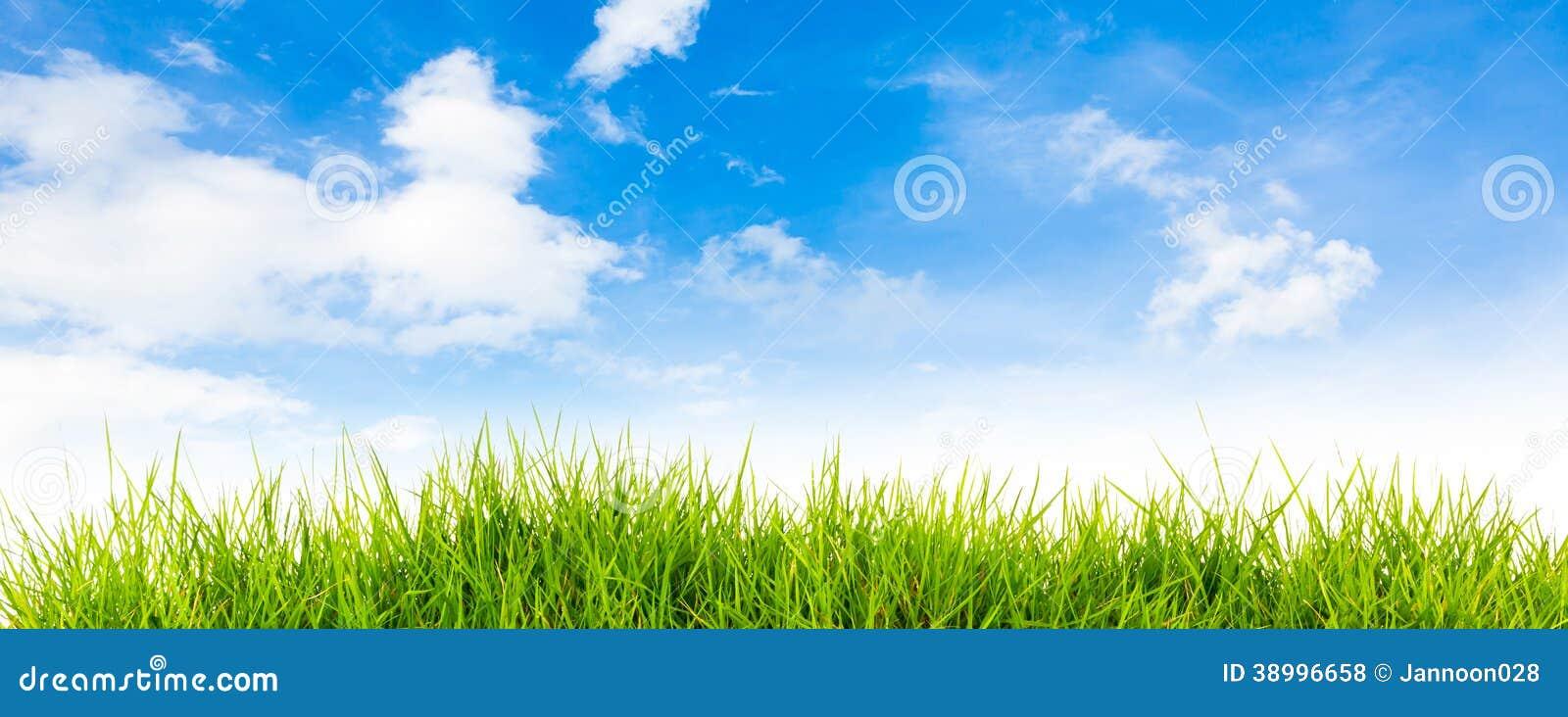 De achtergrond van de de lenteaard met gras en blauwe hemel